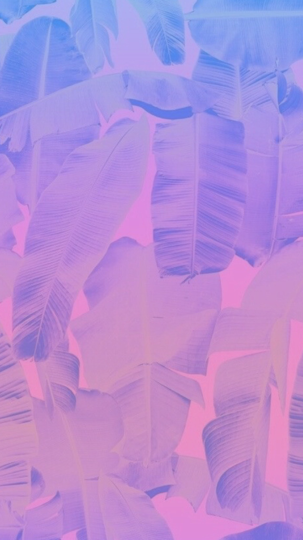 Original image not by me! I just made the ombré/gradient. Leaves,. Pink  Wallpaper IphonePurple WallpaperPhone BackgroundsWallpaper …