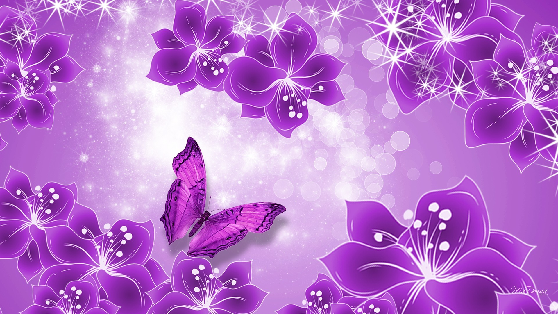 Pink And Purple Butterfly Background Images & Pictures – Becuo