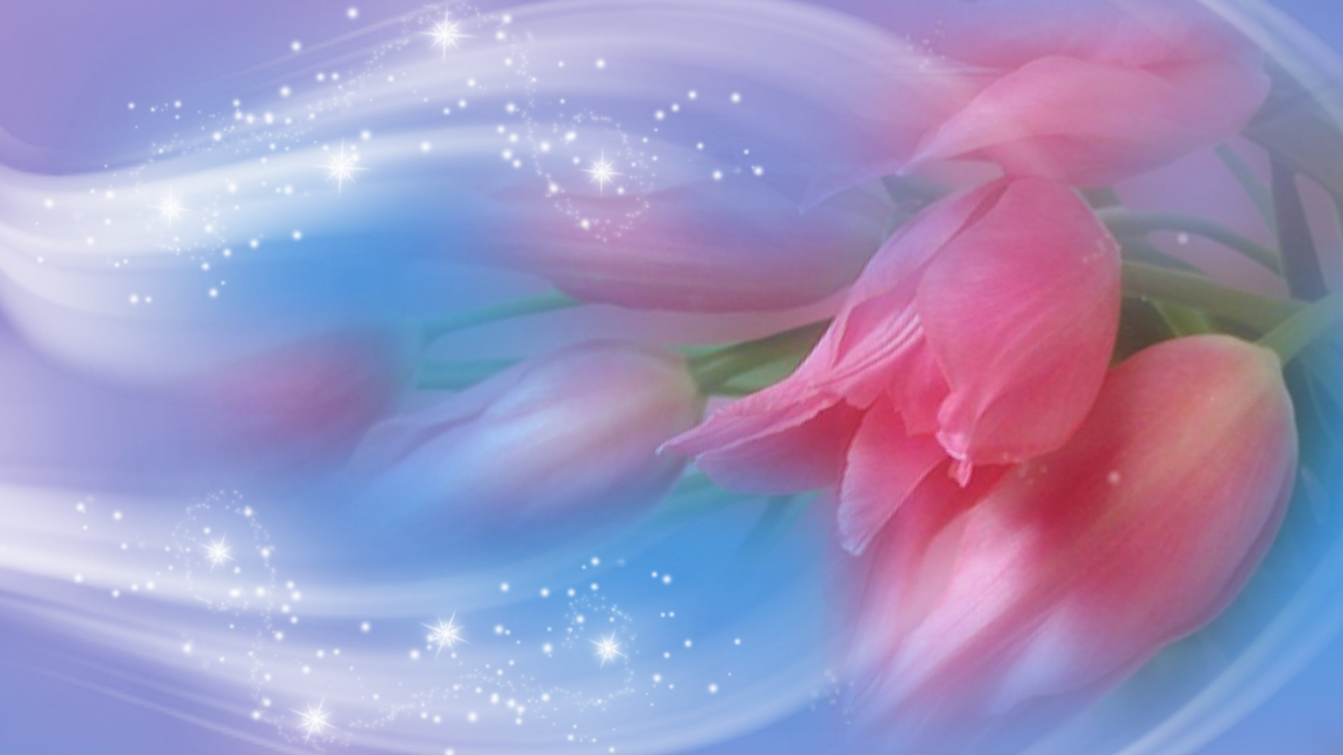 Flowers – Pink Romantic Flower Cute Pretty Blue Wallpapers High Resolution  for HD 16:9