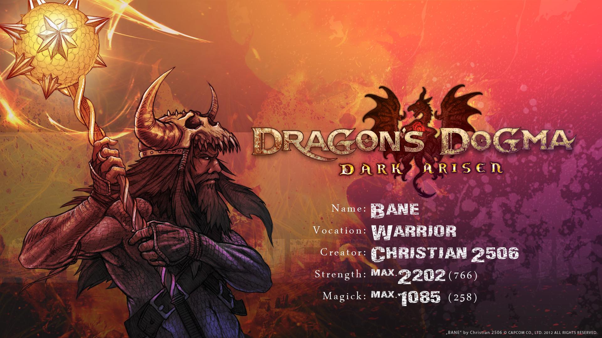 Dragon's Dogma: Pawn Wallpaper by Christian2506 on DeviantArt