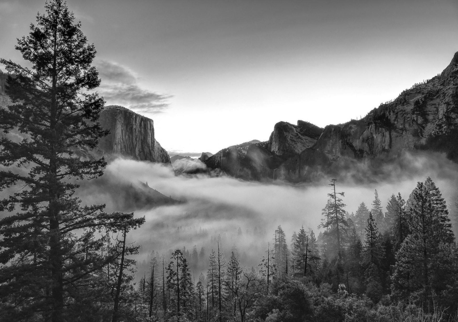 mountain nature forest park photo black and white united states california  yosemite