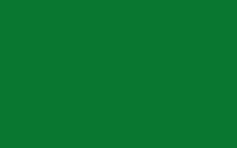 Green Solid Color Wallpaper 986