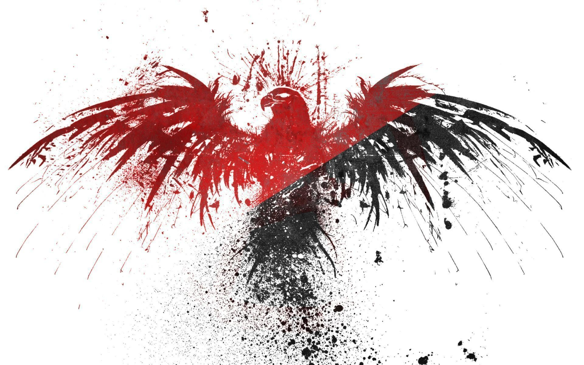 Black Red White Eagles Anarchy Wallpapers