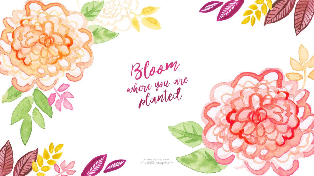Floral Desktop Wallpaper Google Search