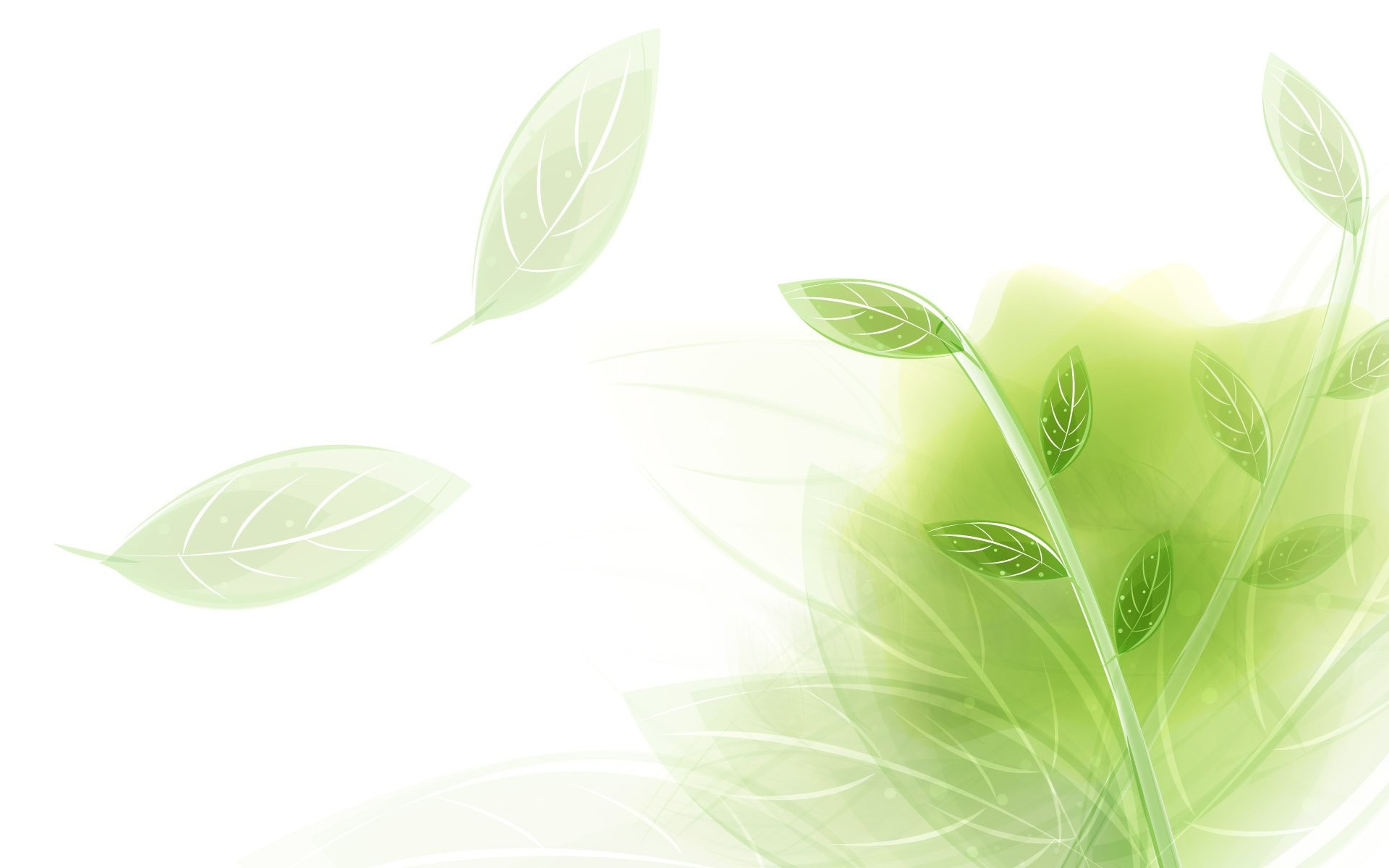 … wallpaper · light green 296288 …
