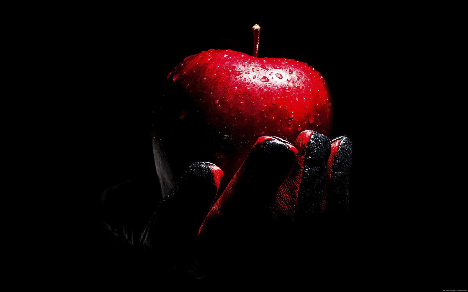 Red Apple black leather glove HD Wallpaper – https://www.hdwallpaperuniverse.