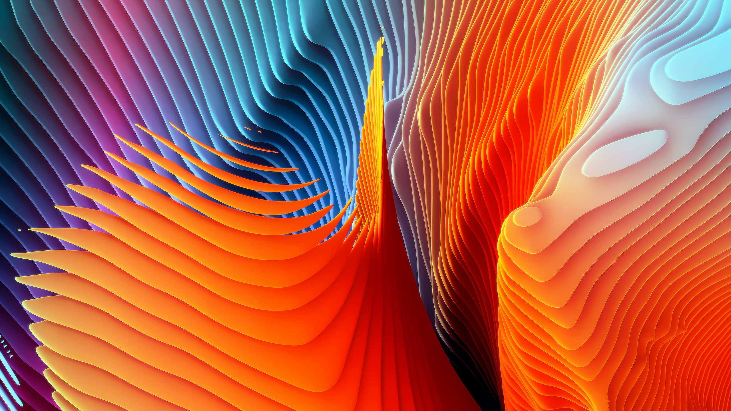 Abstract / Orange Wallpaper