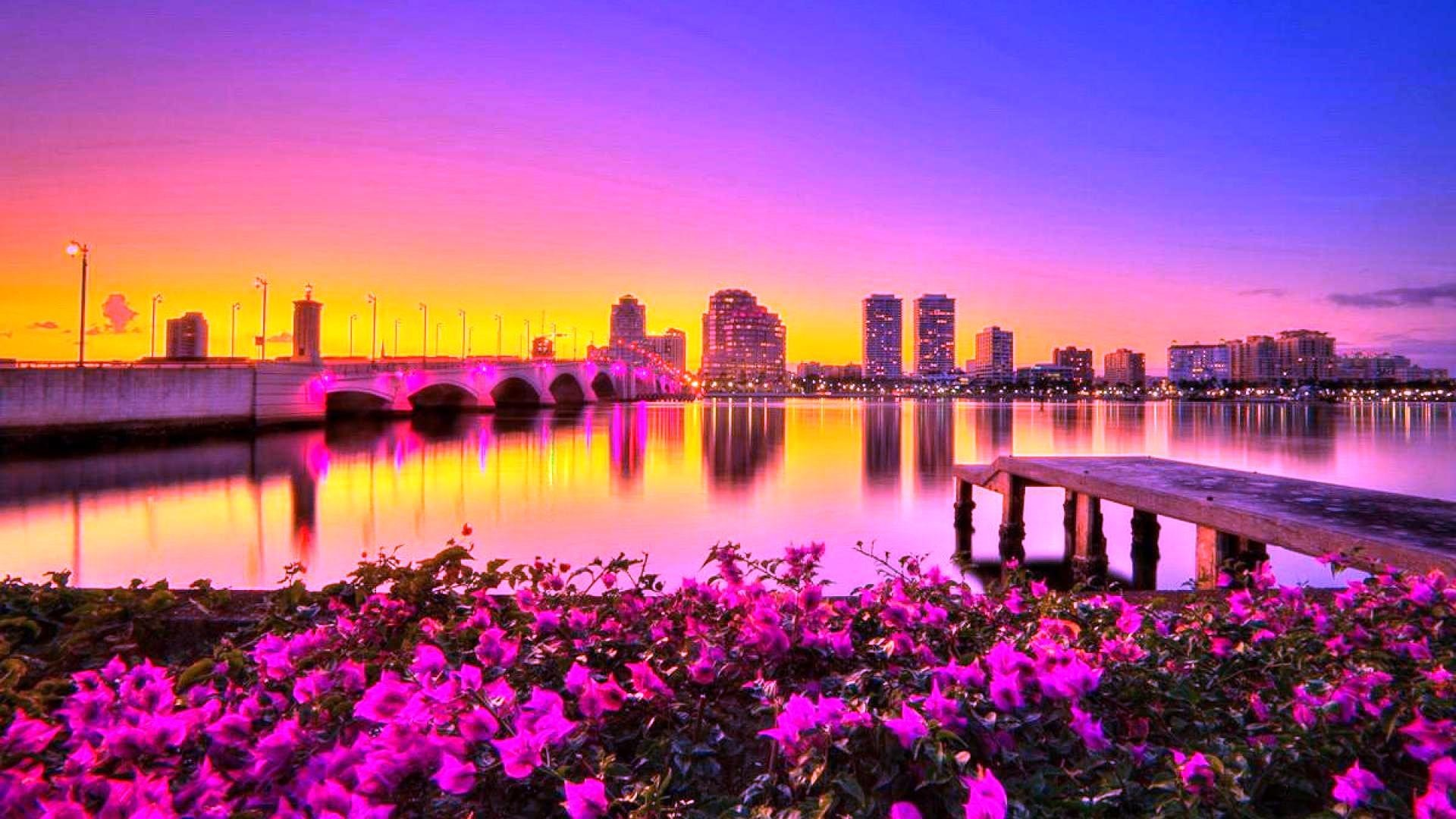 #CC55BB Color – Nature Flowers Sun Fields Sky Photography Clouds City  Sunrise Bridge Splendor Paradise