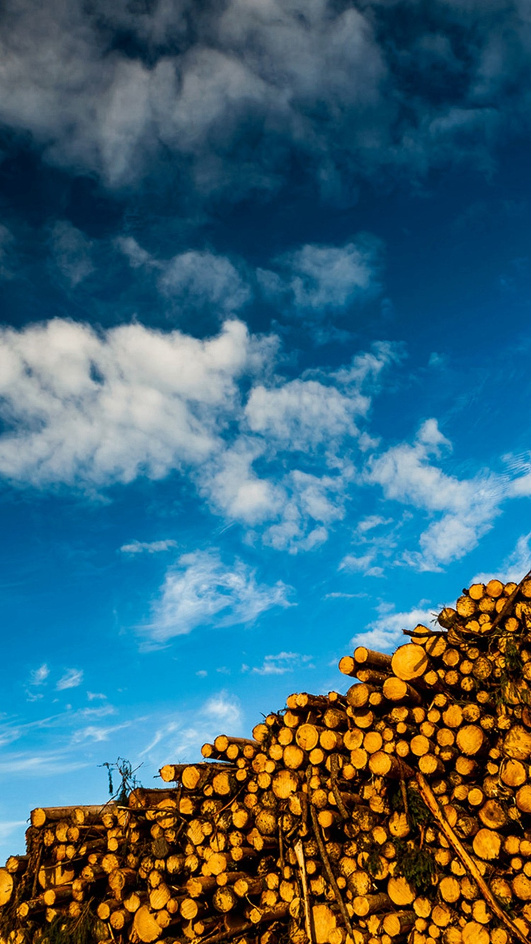 Blue Skyscape And Woods Stack #iPhone #6 #plus #wallpaper