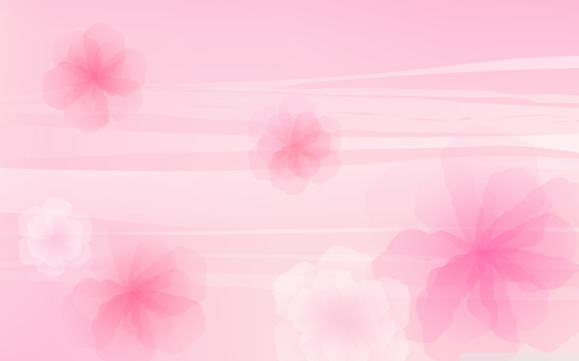 Cool Pink Wallpapers for Your Desktop
