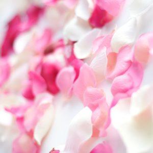 Cute Light Pink