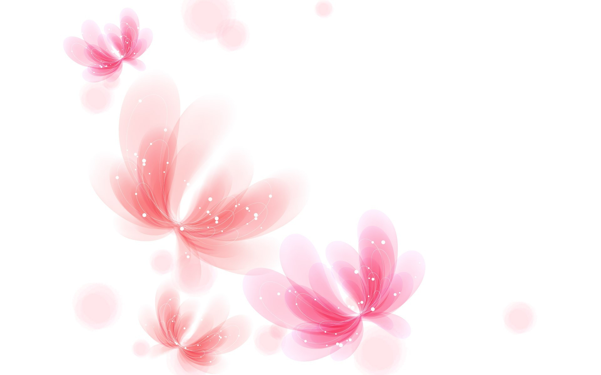 Pink And White Backgrounds …