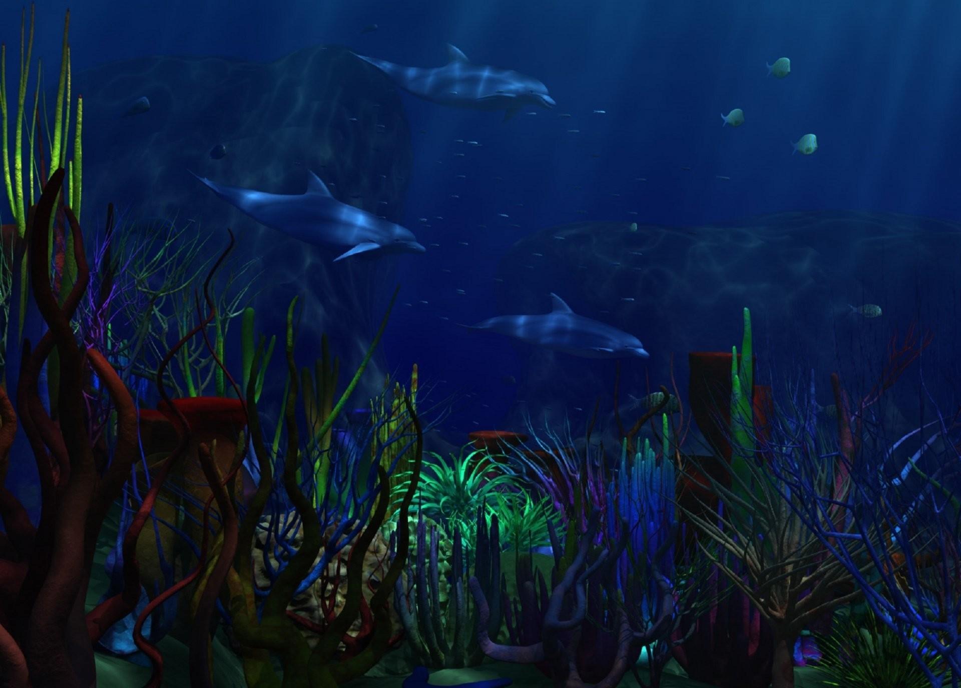 underwater world sea dolphins algae corals . dark blue background .