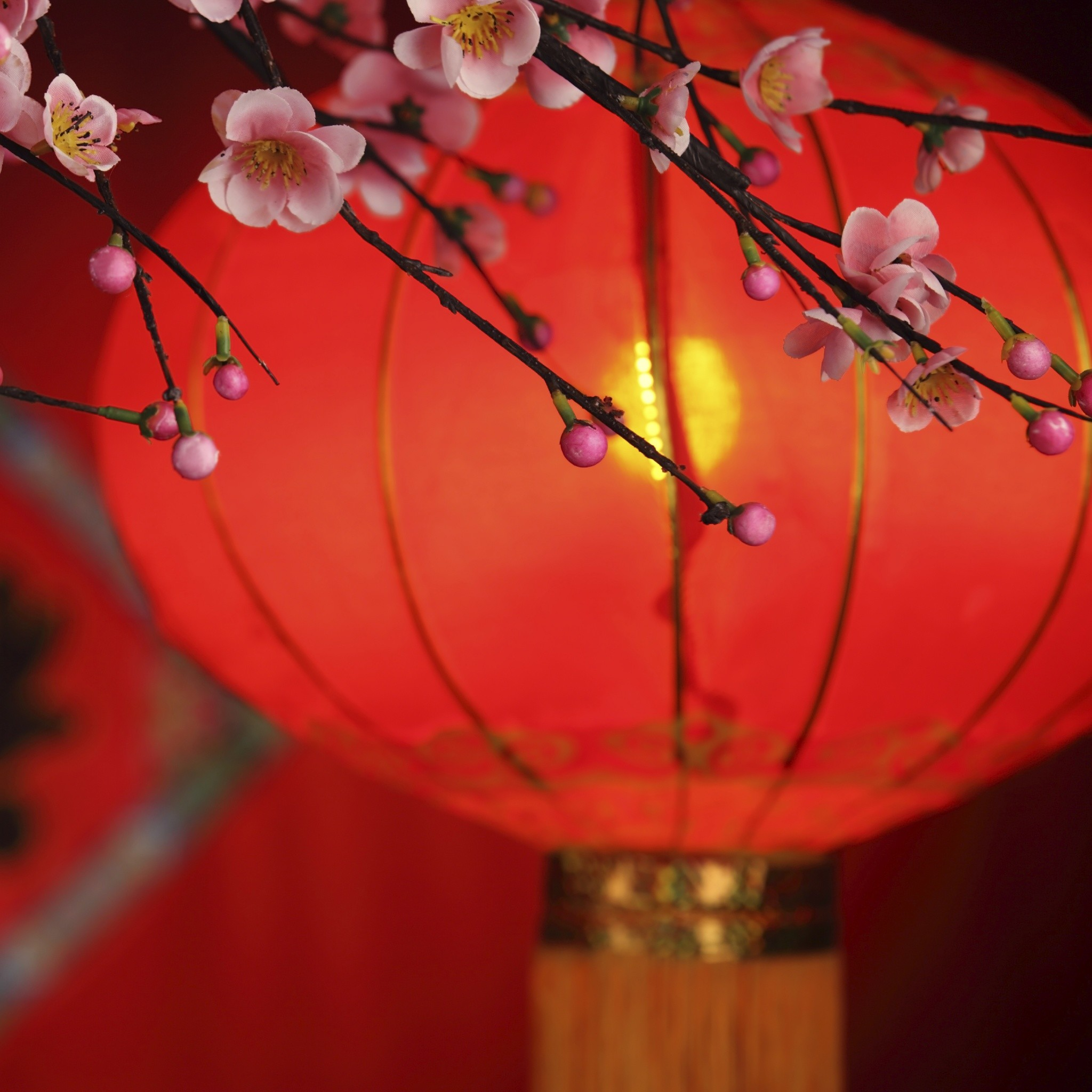 Chinese New Year Lantern. The Lantern Of Blessing. Happy Lunar Chinese New  Year 2016 Greetings for family and friends. Tap to see more wallpapers, …