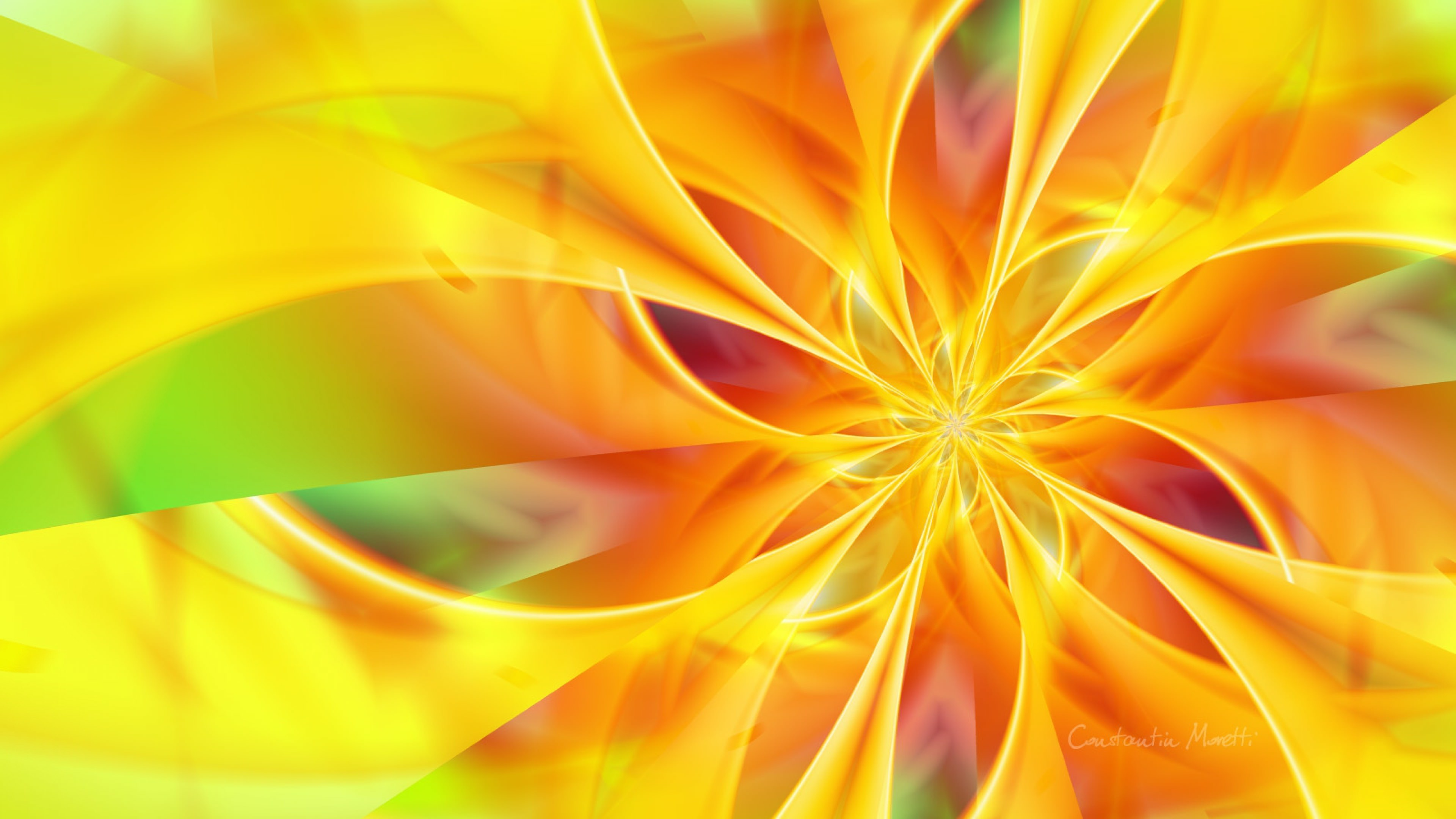 Download Colorful Yellow Flower Background