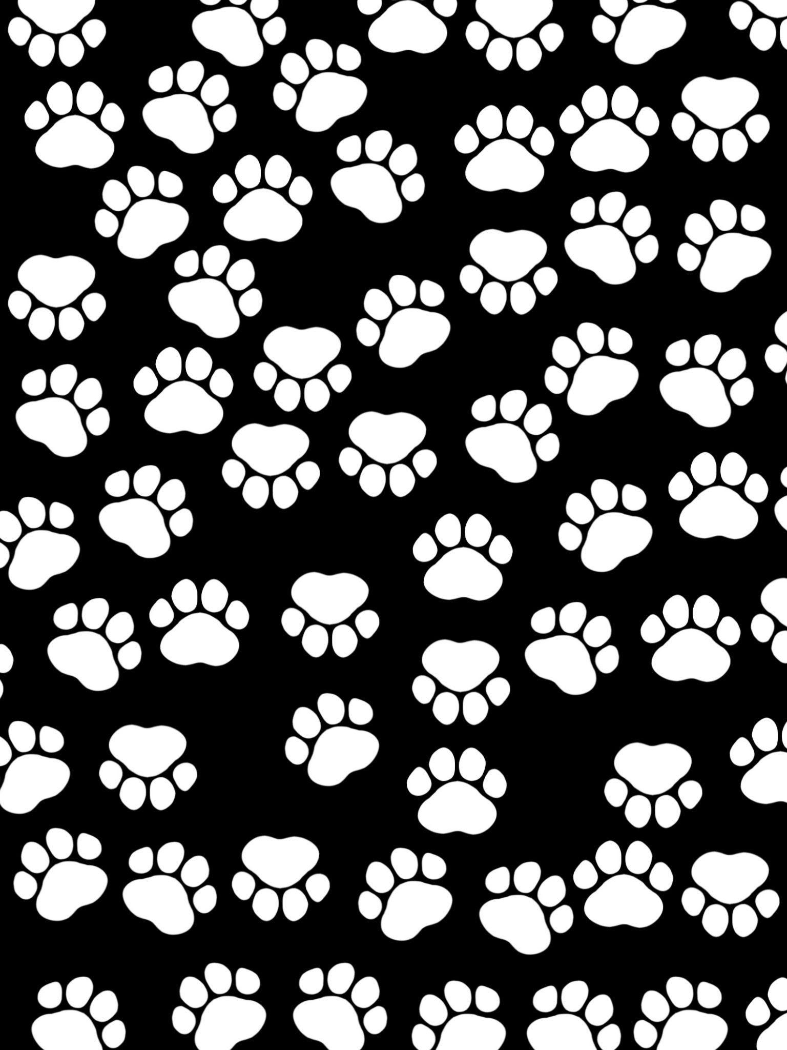 Paws iPad Air Wallpaper – Black White