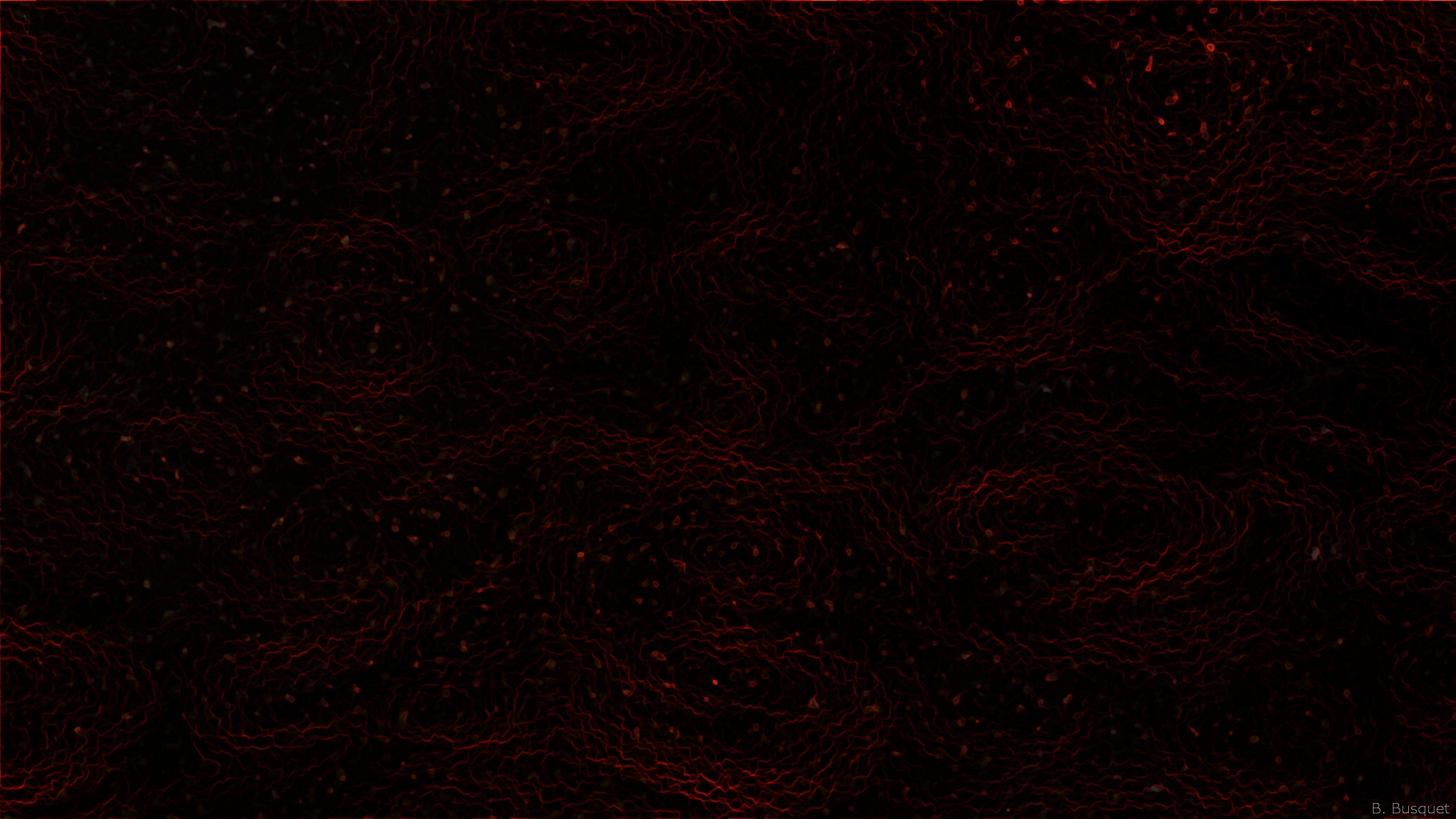 Abstract wallpaper with a dark pattern in black and red colors.