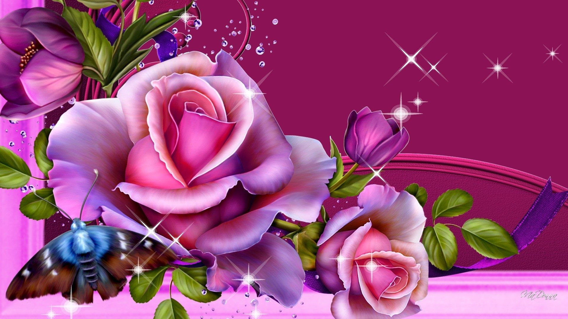 Bright Beautiful Shine Sparkle Blossoms Majenta Buds Butterfly Pink Glow  Roses Wallpaper Flowers Rose – 1920×1081