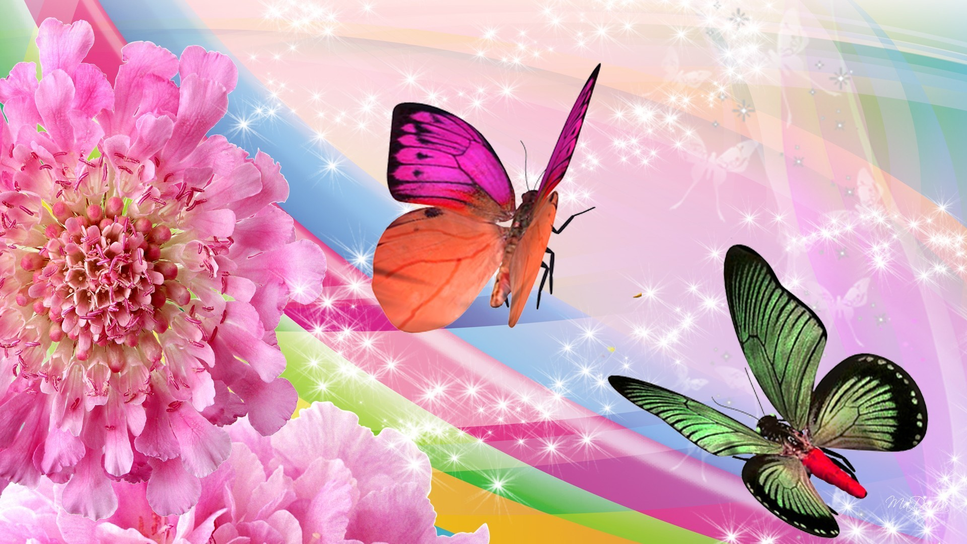 Butterflies Tag – Rainbow Flowers Butterflies Butterfly Firefox Persona Sparkles  Pink Bright Stars Mobile Wallpapers Hd