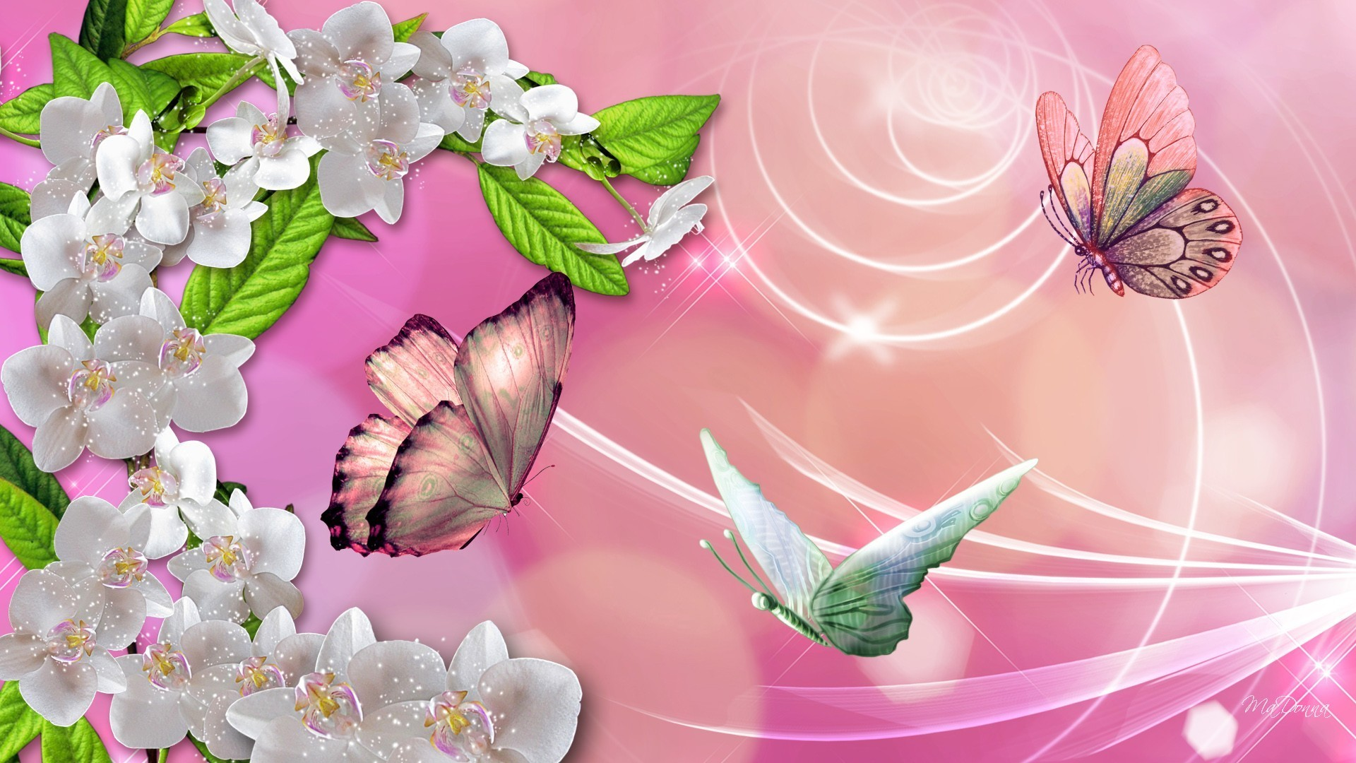 Butterflies Tag – Leaves Swrils Orchids Butterflies Magical Spring Flowers  Summer Pink Sparkles Silk Wallpapers In