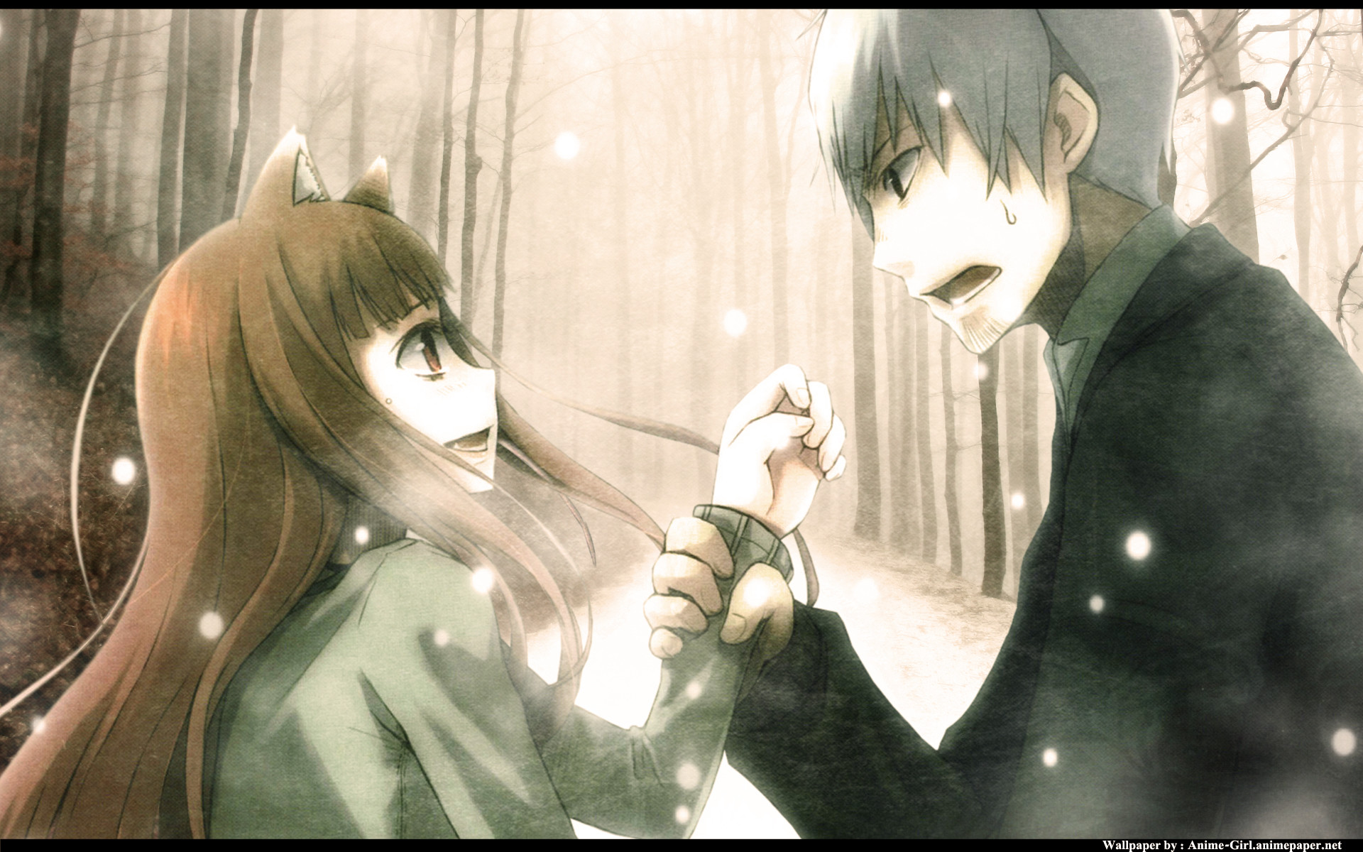 Anime – Spice and Wolf Wallpaper