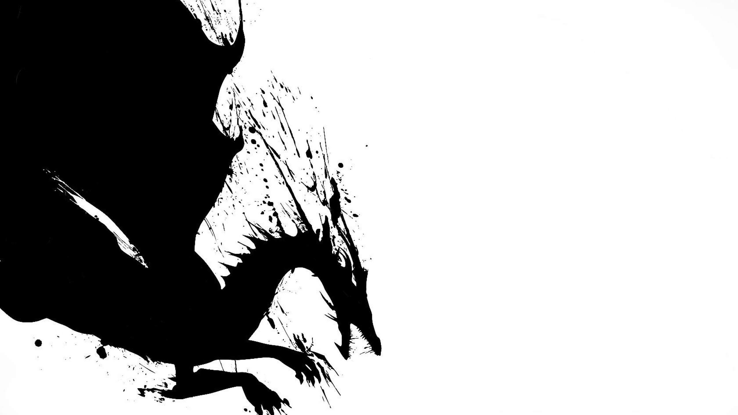 White And Black Dragons Wallpaper 2d Dragon Black White Black