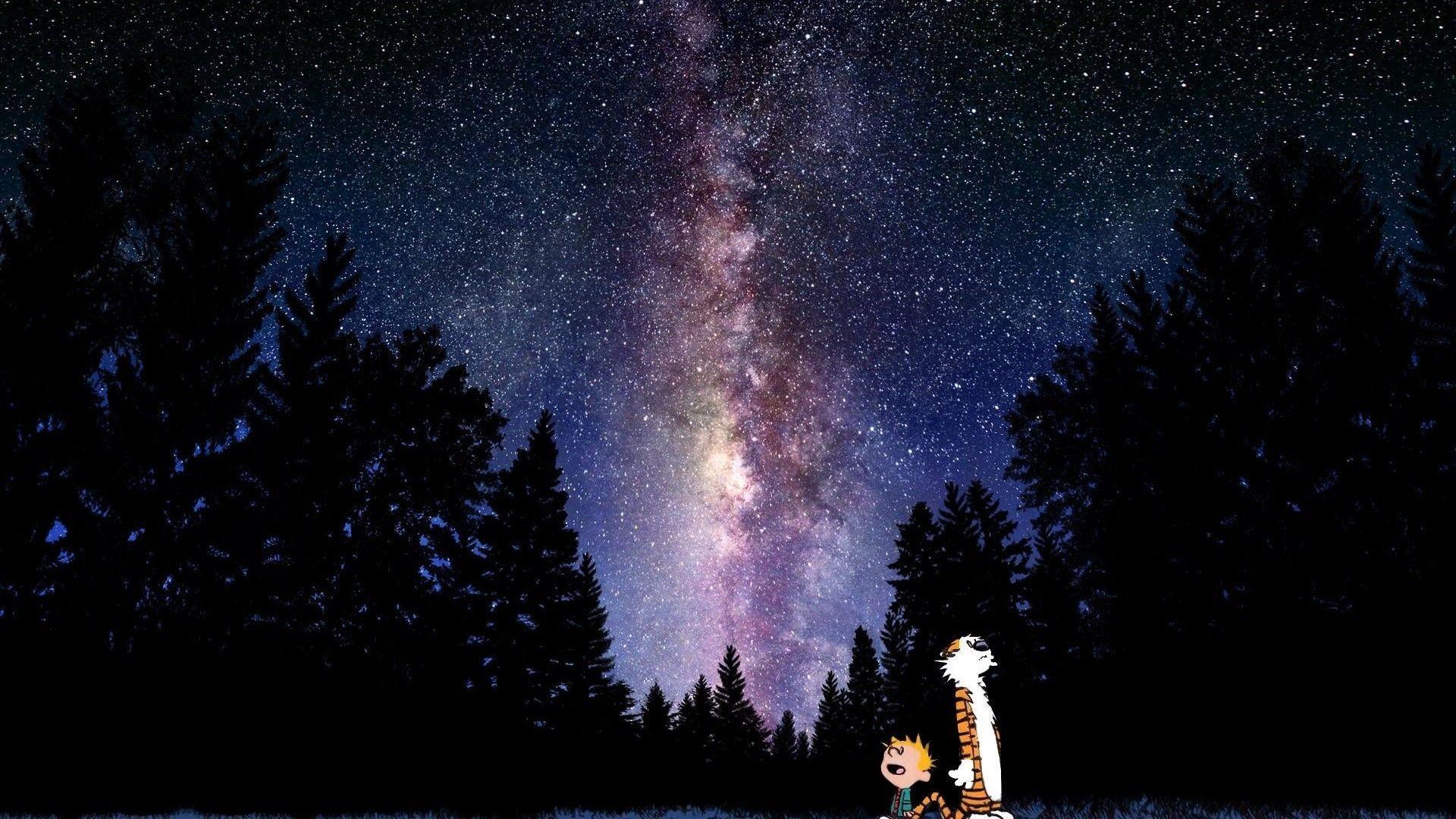 Calvin and hobbes comics sky stars mood sci-fi g wallpaper .