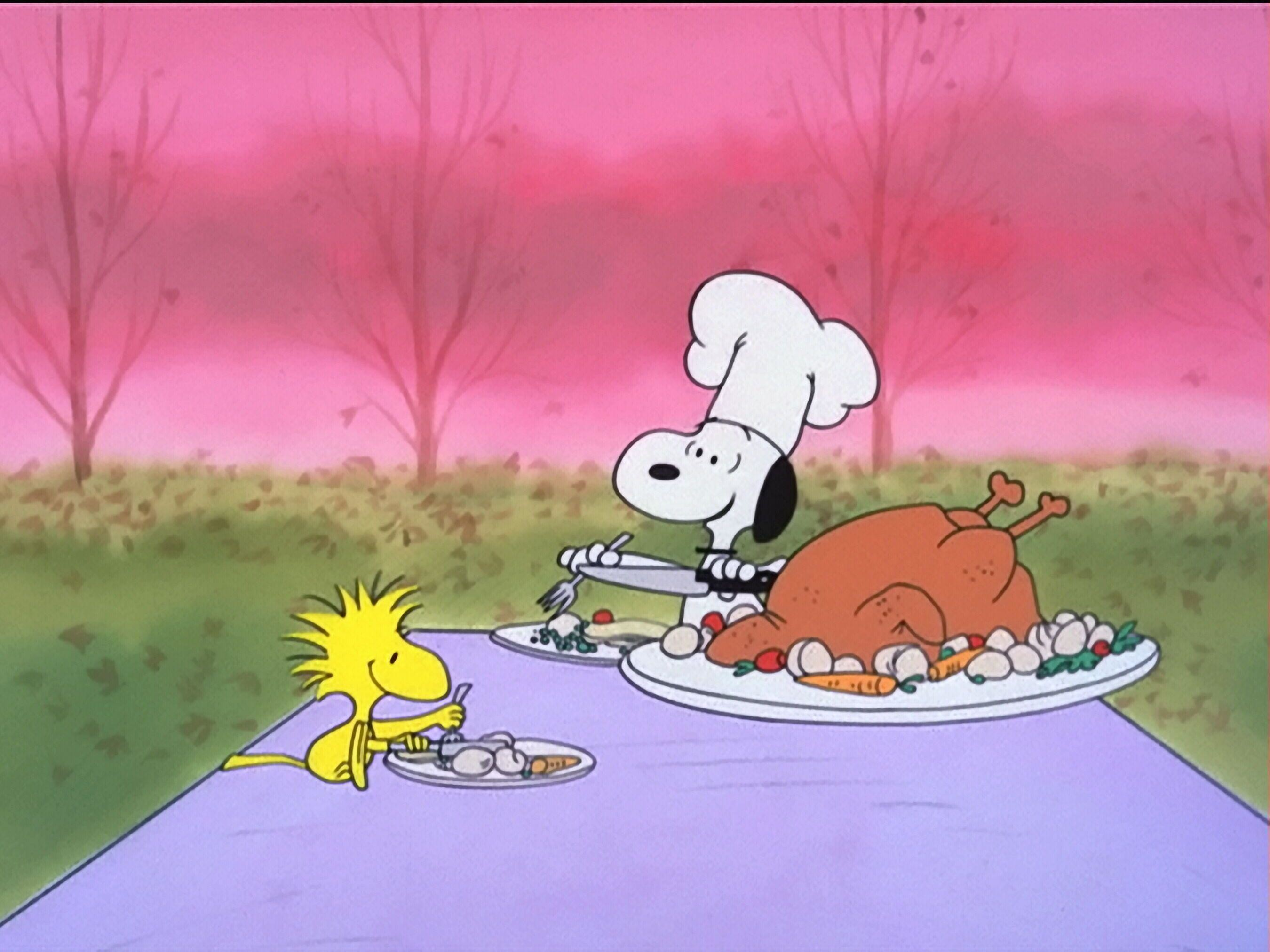Wallpapers For > Charlie Brown Thanksgiving Backgrounds