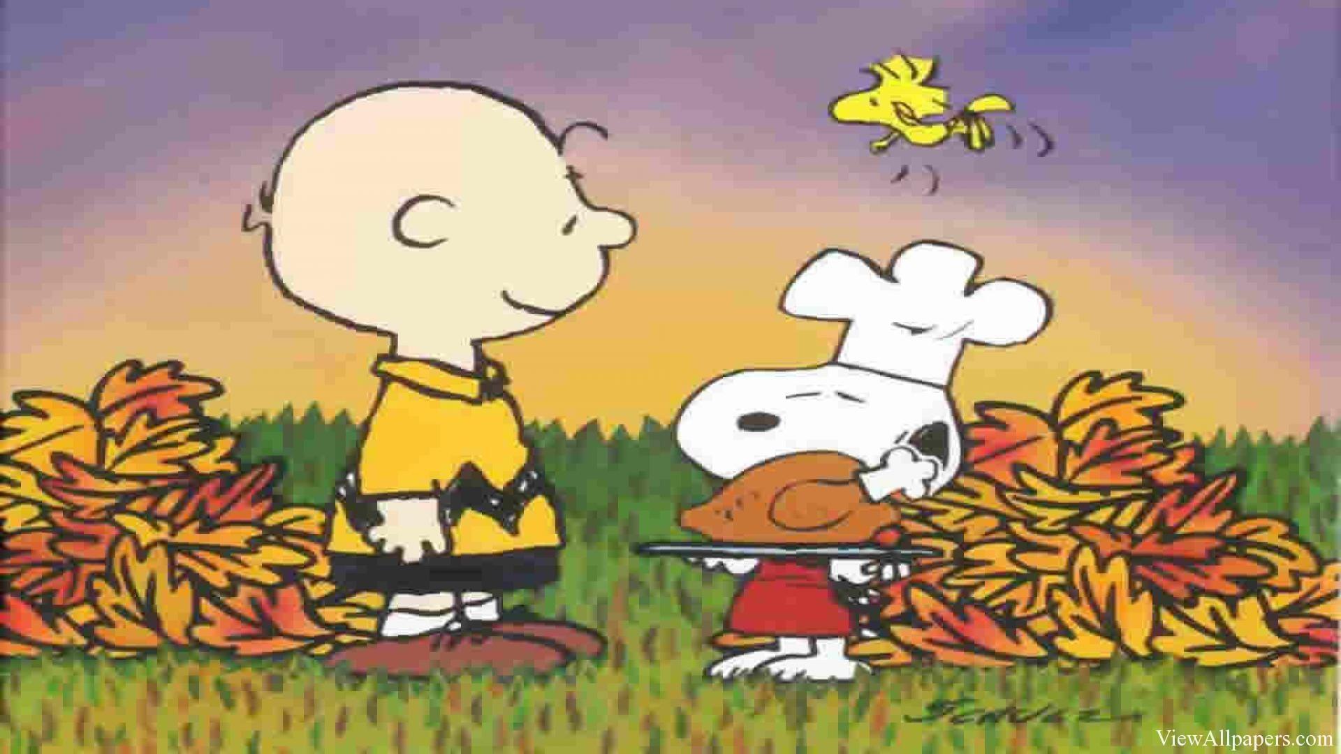 Charlie Brown Wallpaper   Cartoon & Animation HD Wallpapers