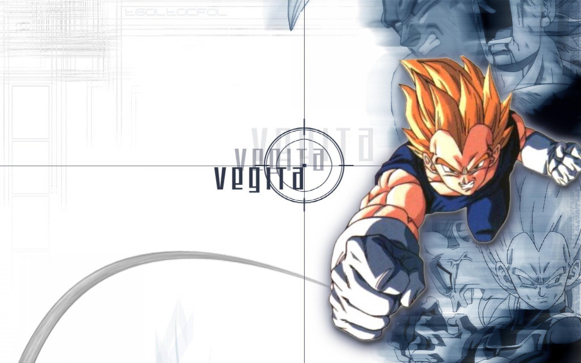Dragon Ball Z Vegeta Wallpaper