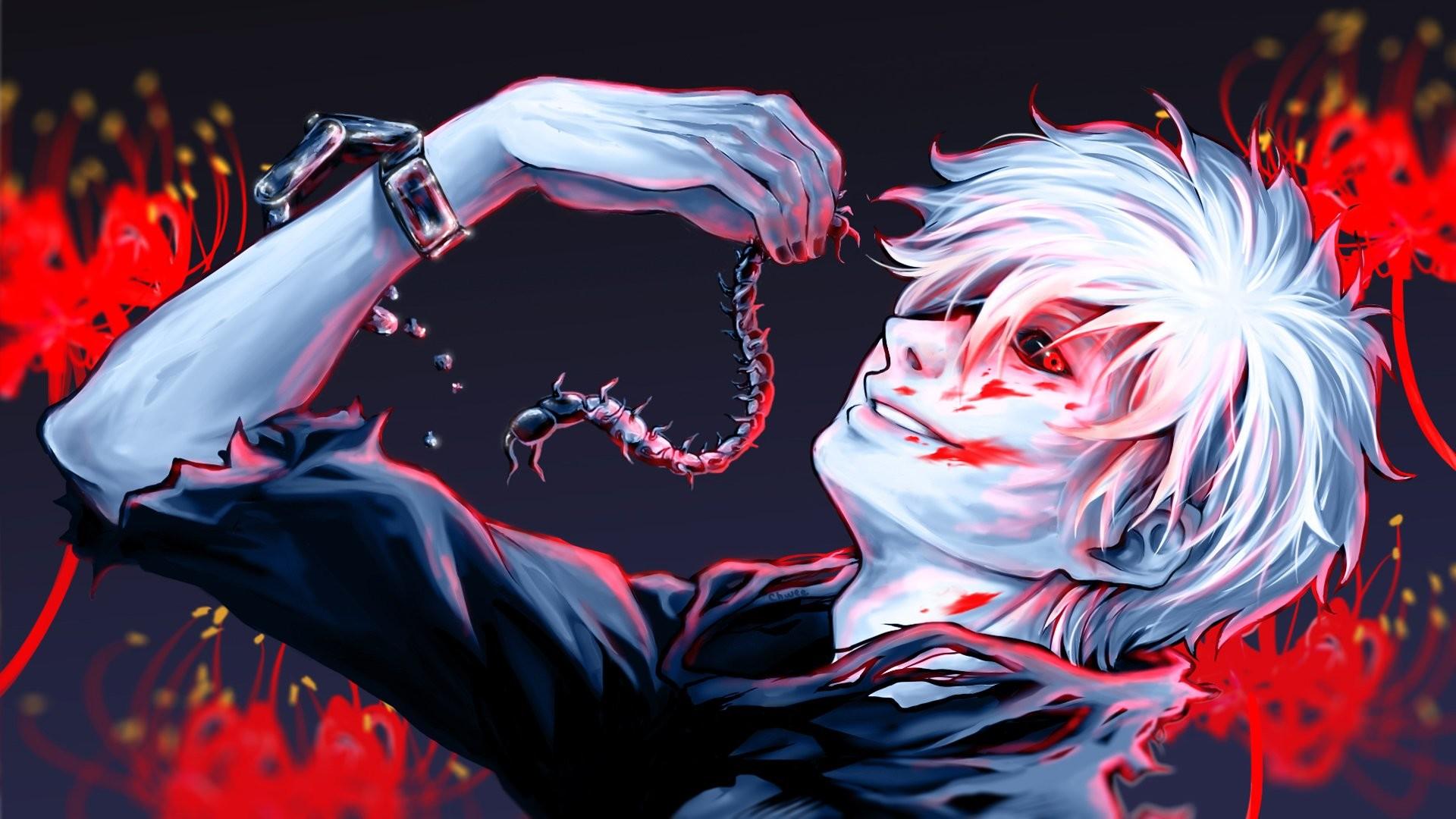 Ken Kaneki Tokyo Ghoul · HD Wallpaper | Background ID:596590
