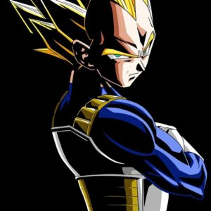 Majin Vegeta Wallpaper HD