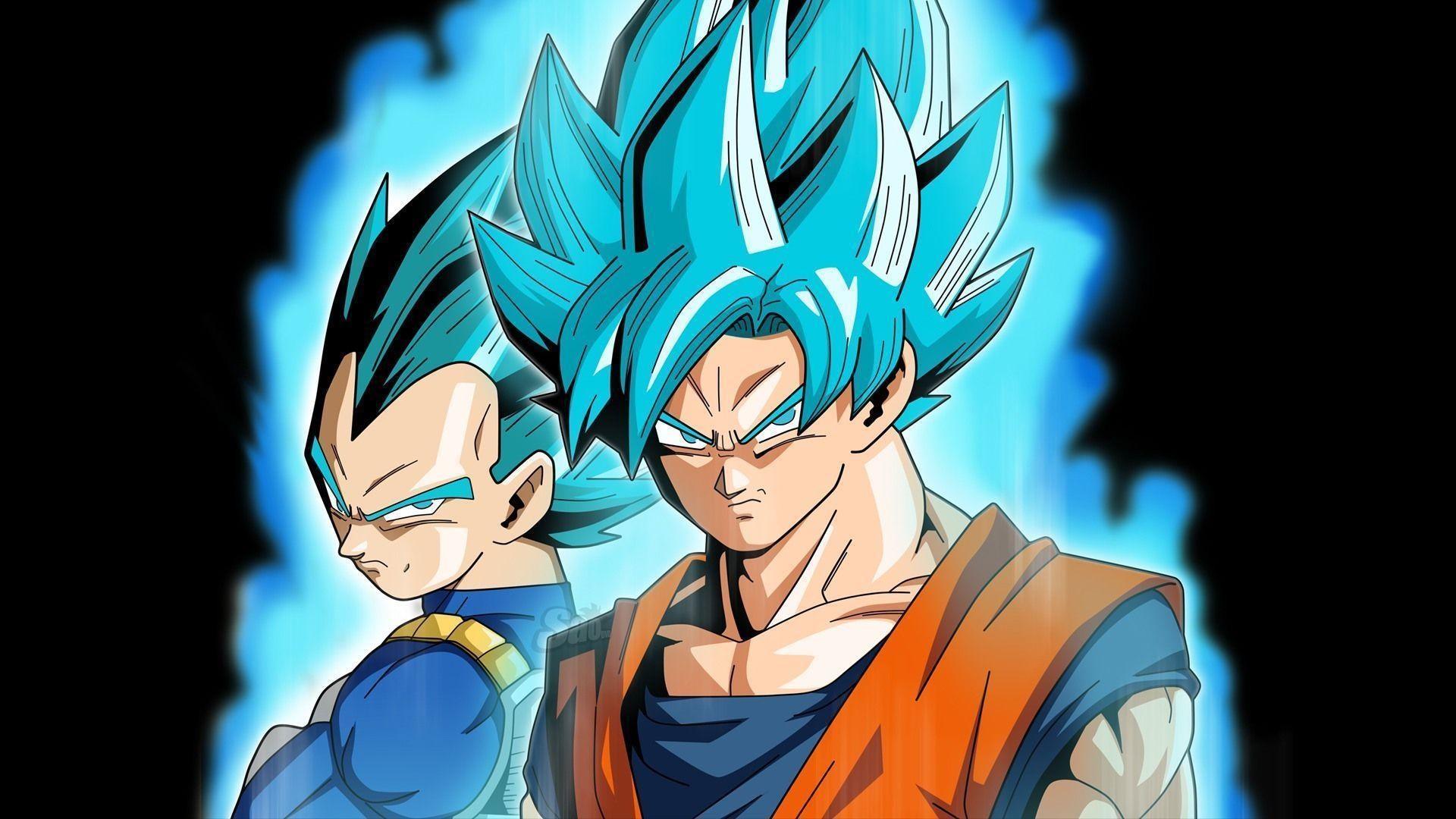 Download Goku Super Saiyan Blue Wallpaper  Background