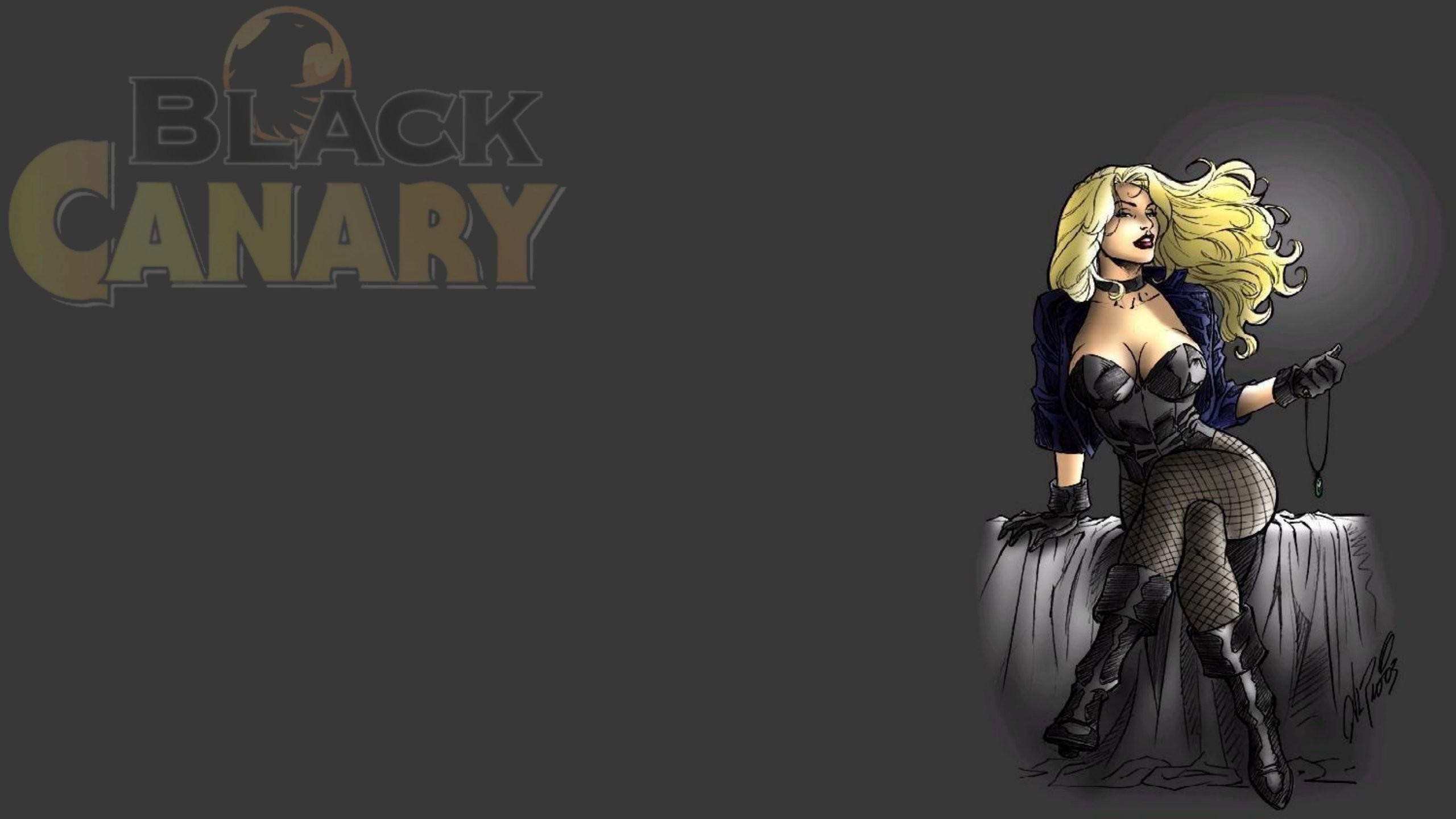 HD Wallpaper   Background ID:478742. Comics Black Canary