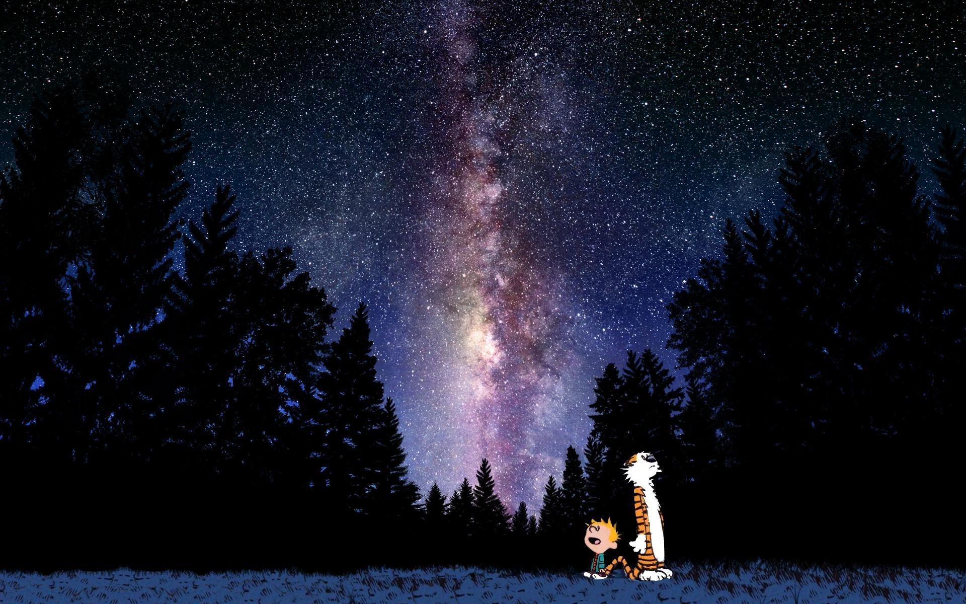 Calvin And Hobbes Comics Milky Way Space Stars