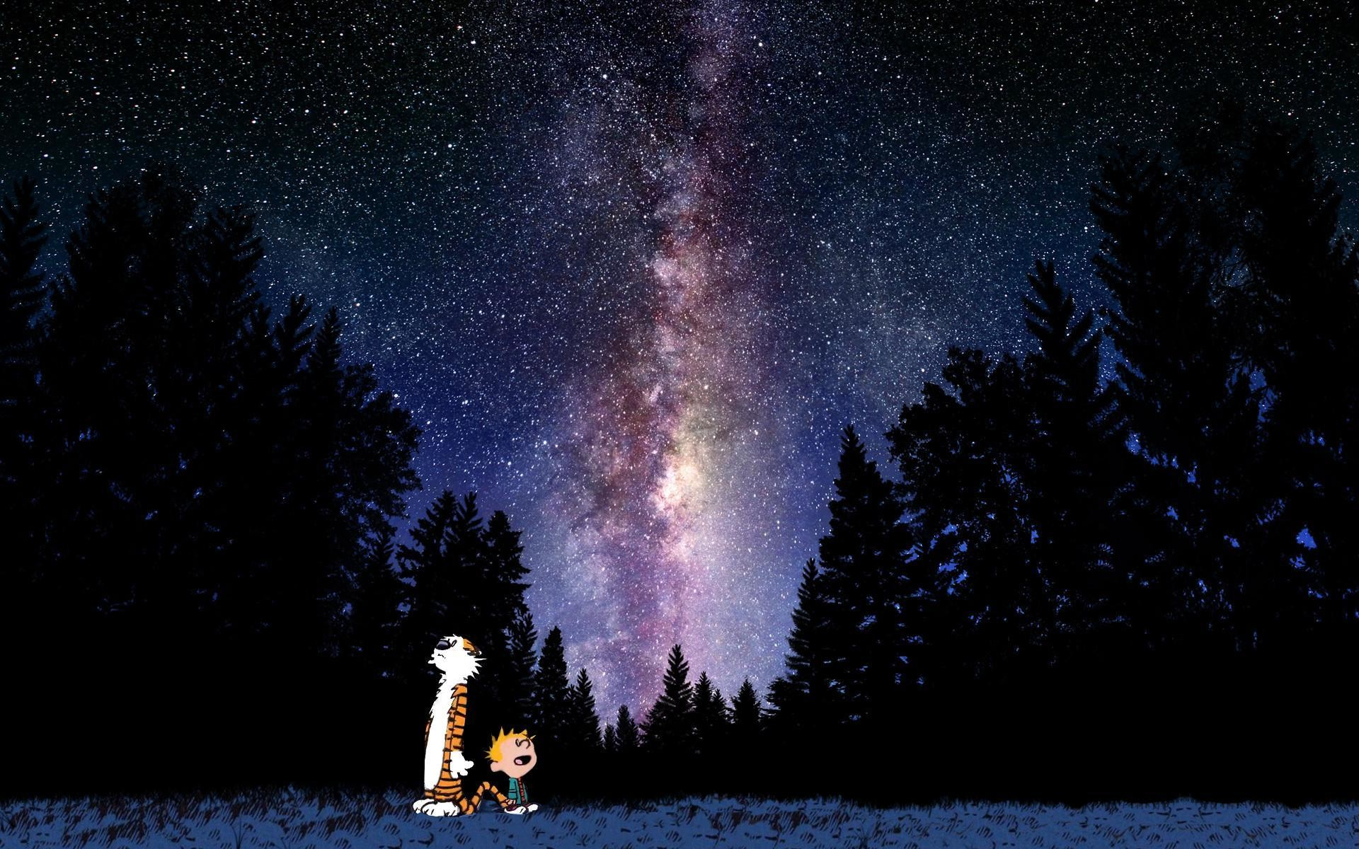 Calvin And Hobbes Looking At Stars Wallpaper | | ID:35253