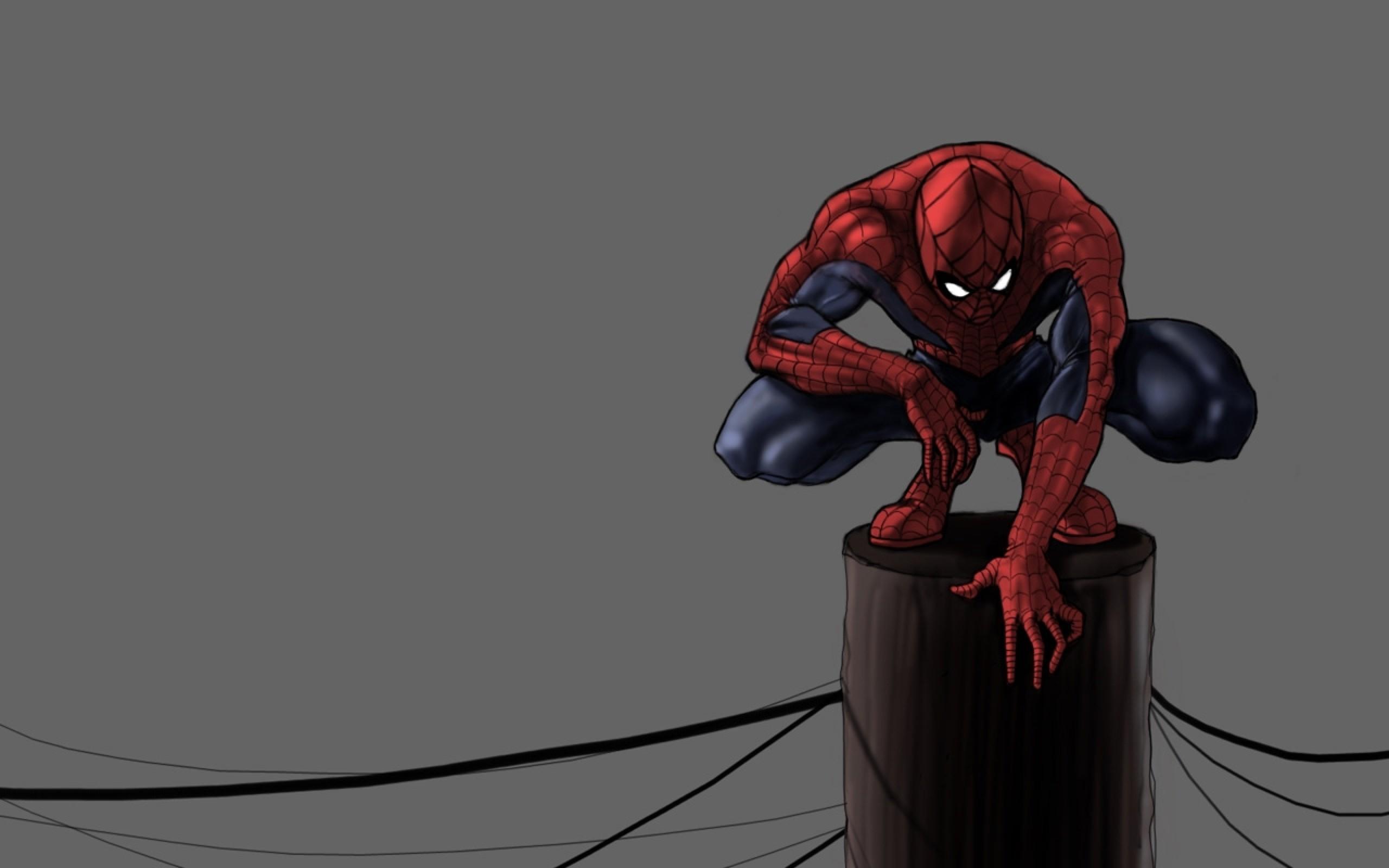 Cartoon Spiderman Squat on a Pole HD Grey Wallpaper Widescreen