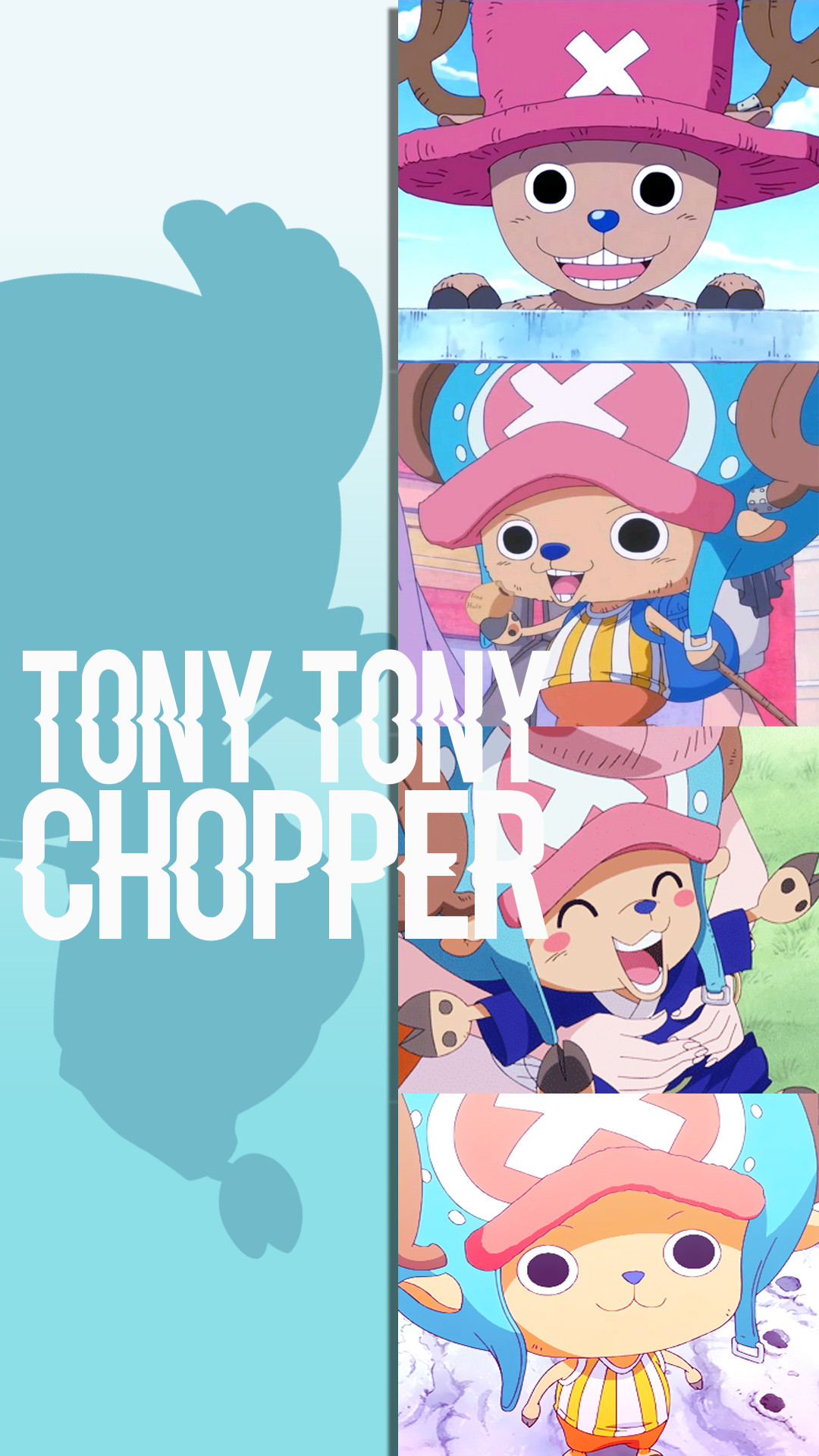 One Piece Tony Tony Chopper