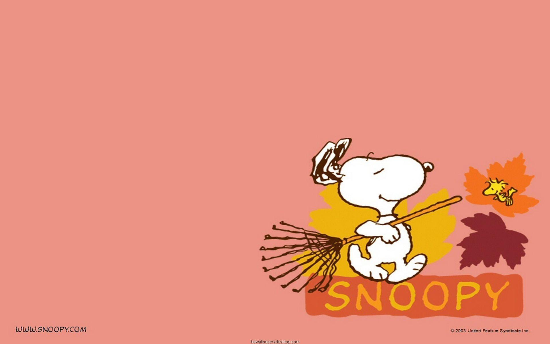 Snoopy Wallpaper   Large HD Wallpaper Database