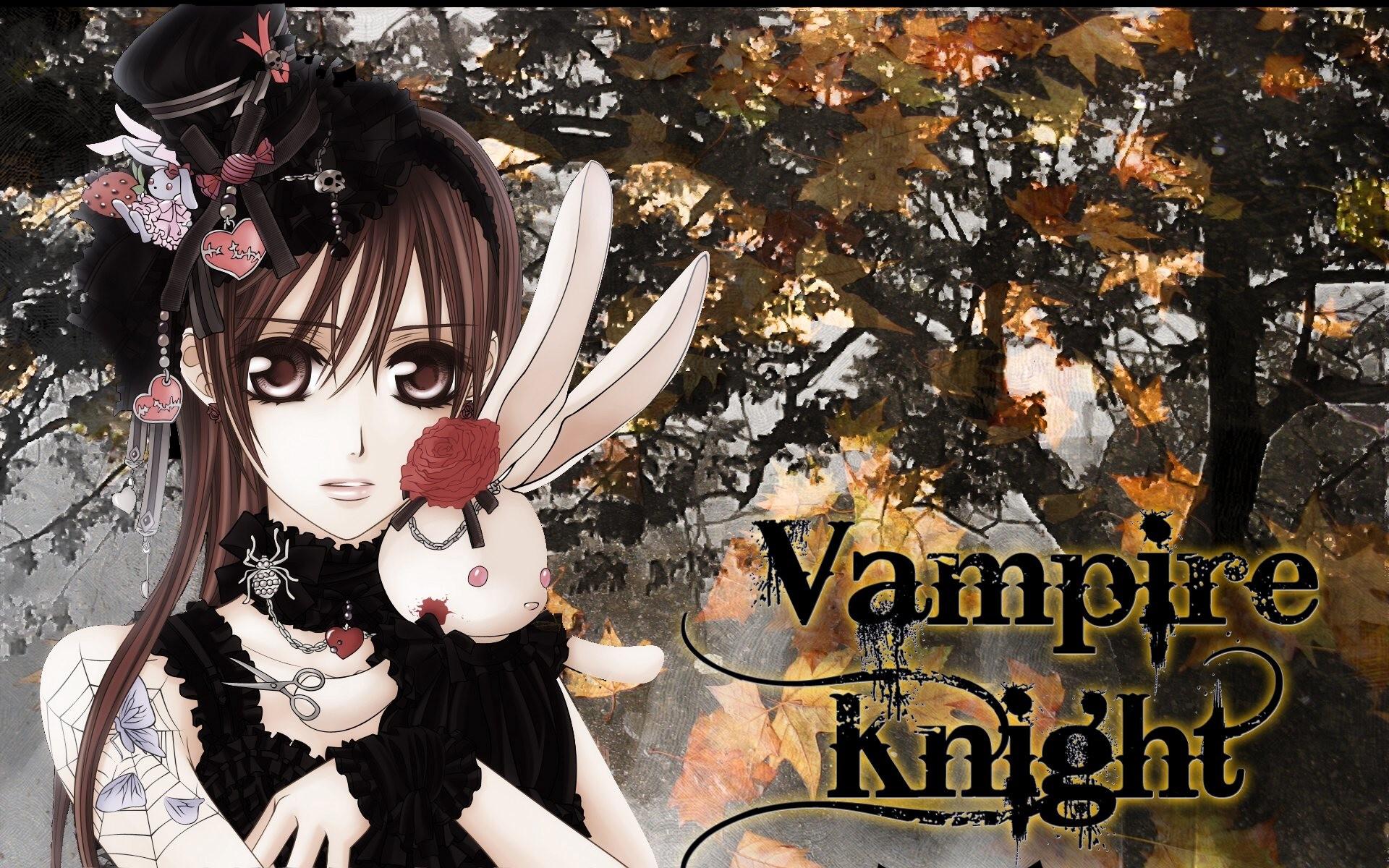 7. vampire-knight-wallpaper4-600×375