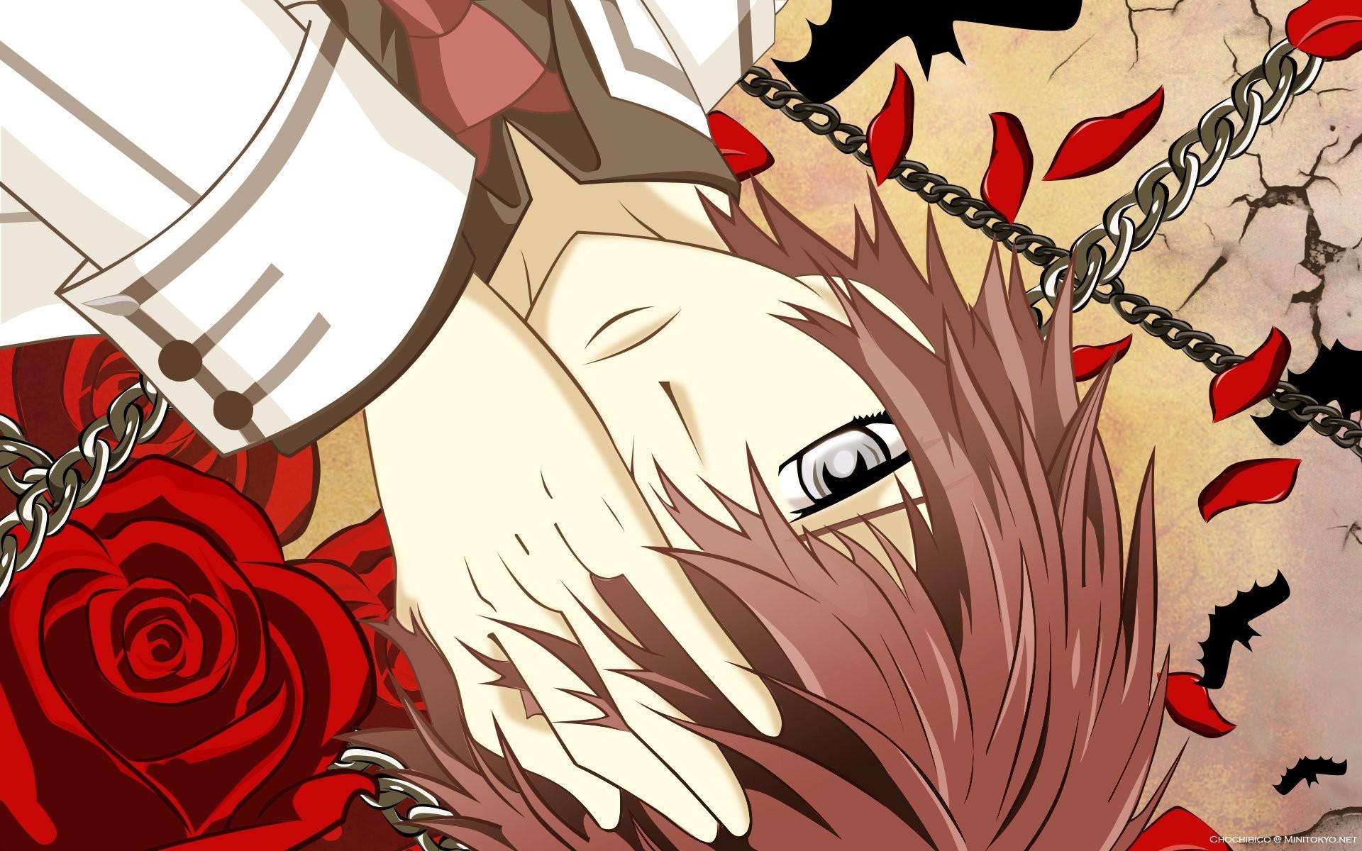 Anime – Vampire Knight Wallpaper