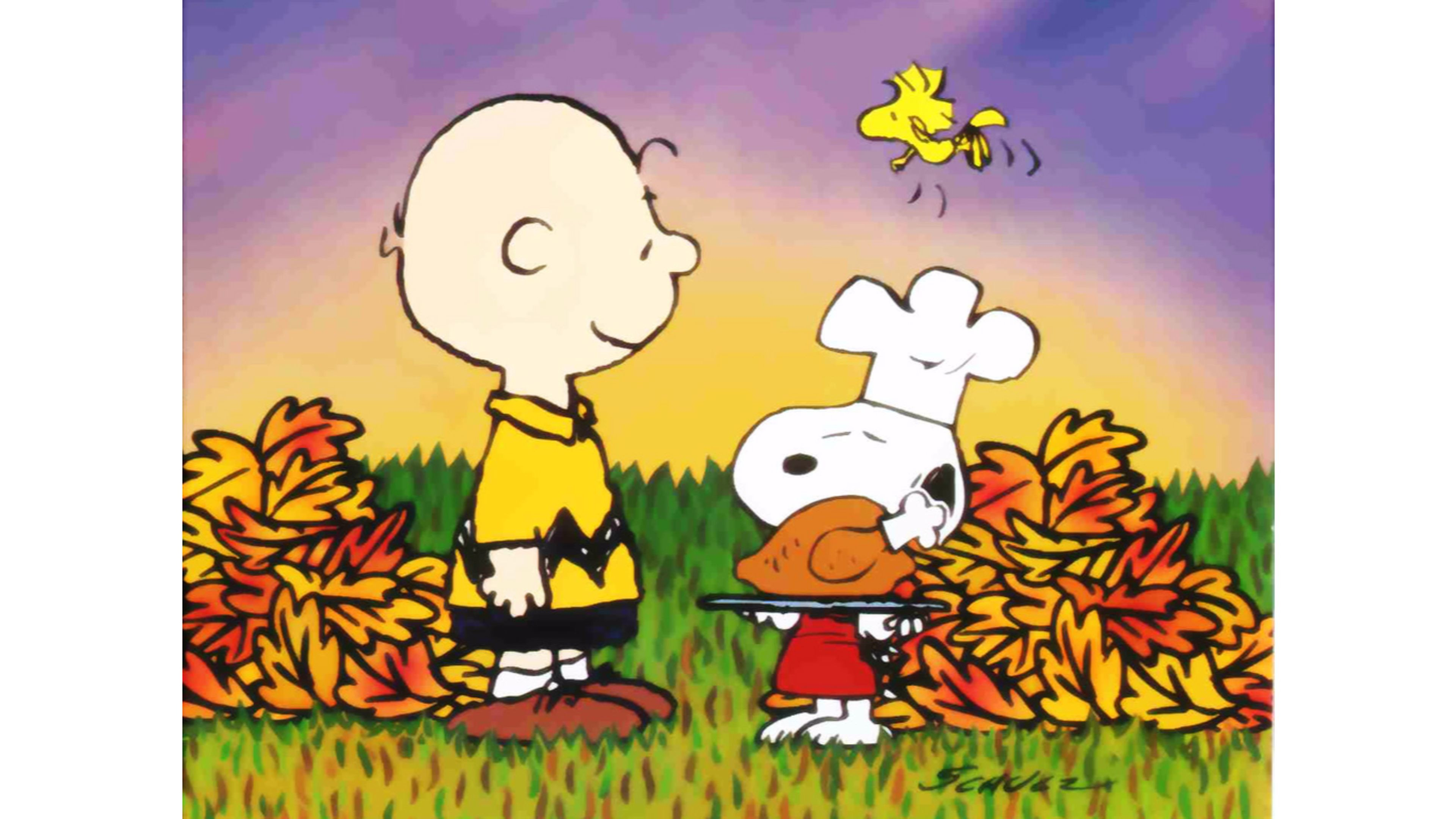 Charlie Brown Halloween Facebook Cover   Free Here. Charlie Brown Halloween  Facebook Cover Free Here