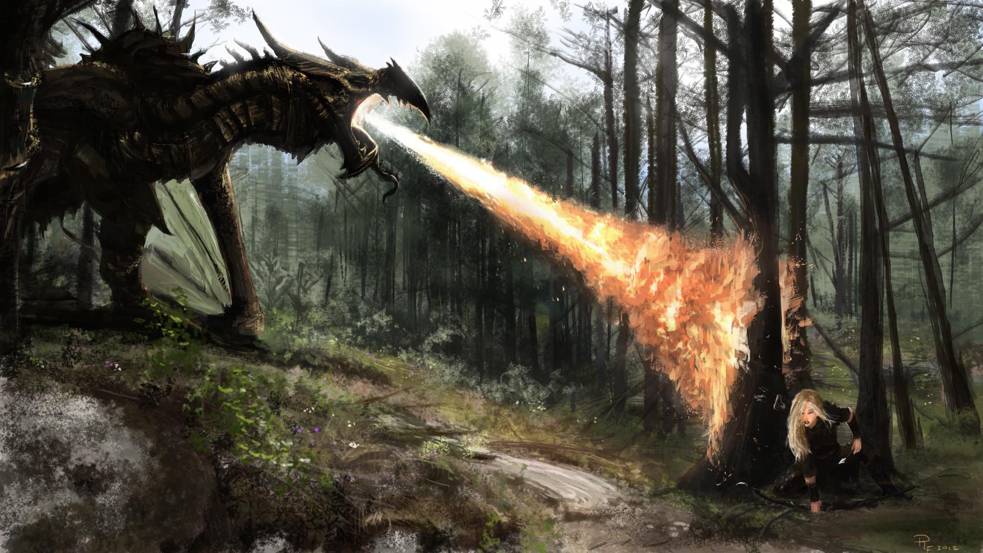 Jeux Vid̩o РThe Elder Scrolls V: Skyrim Skyrim Guerrier(̬re) The Elder