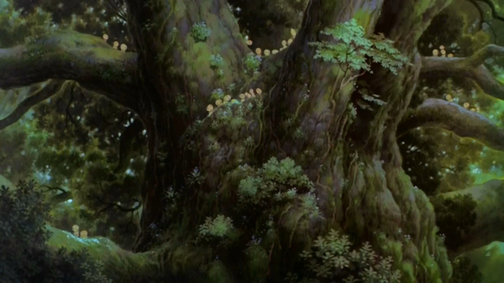 Movie – Princess Mononoke Wallpaper