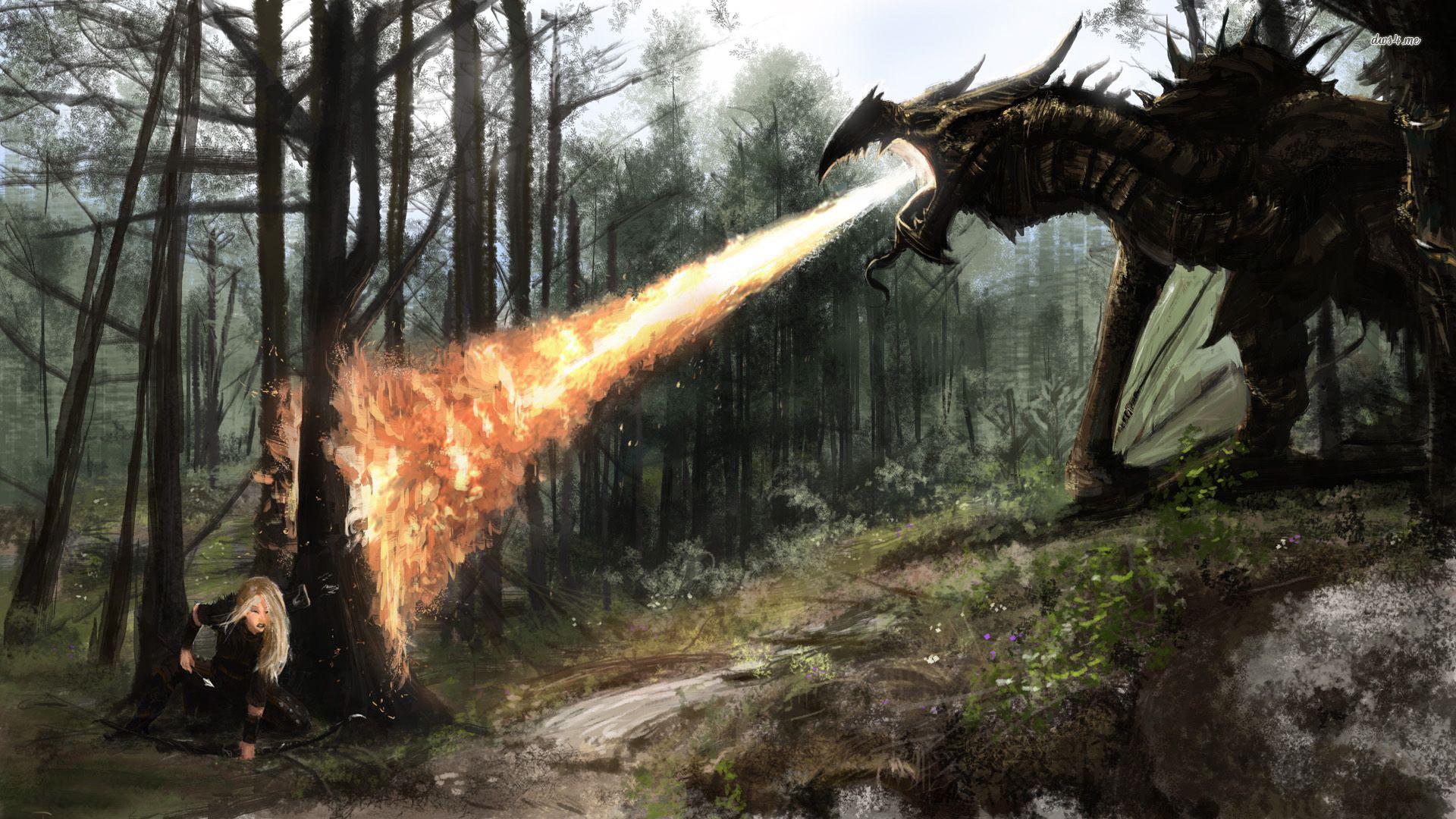 The Elder Scrolls V Skyrim Dragon HD Wallpaper – Stylish HD Wallpapers