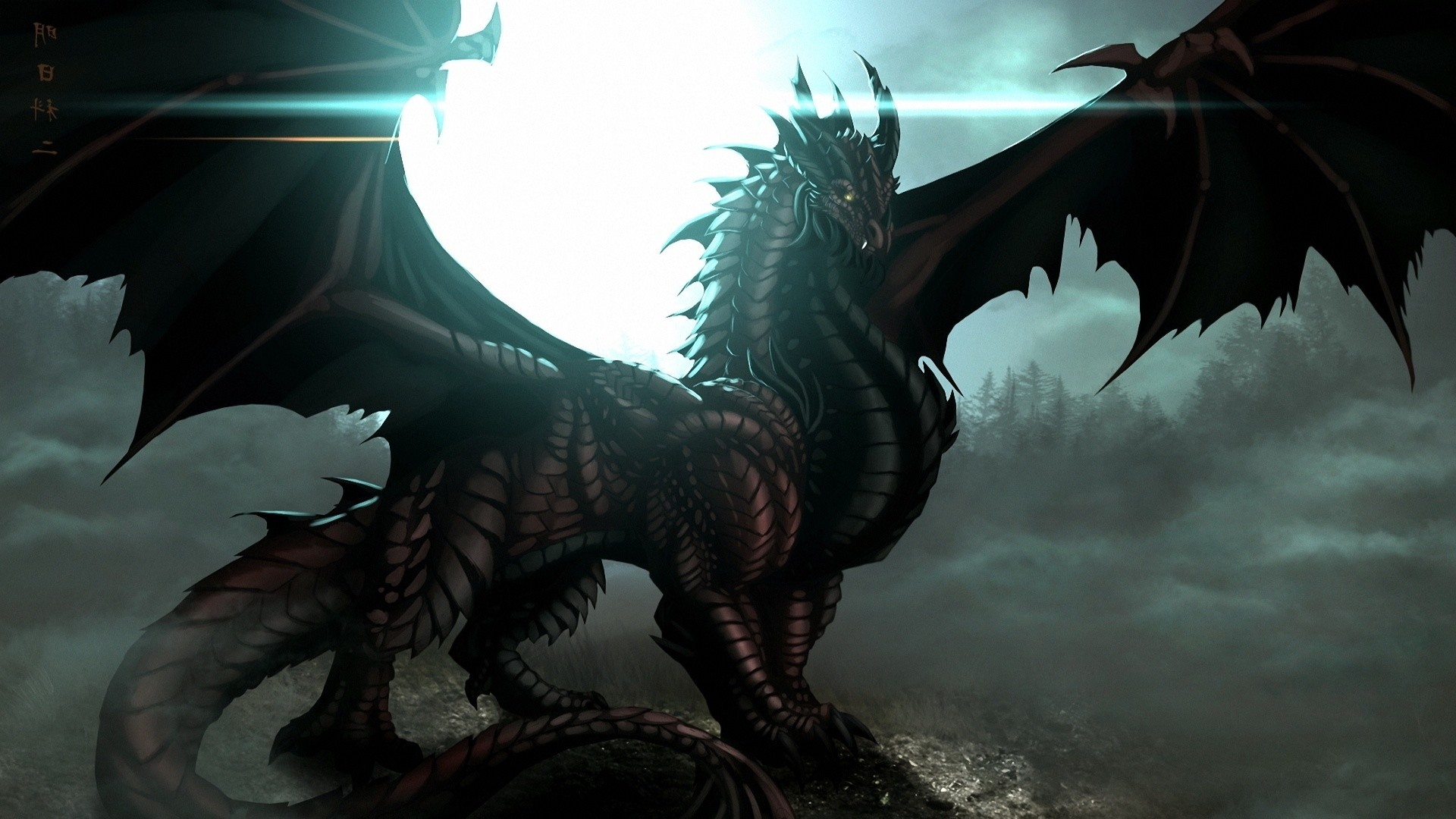 Collection of Black Dragon Wallpaper Hd on Spyder Wallpapers