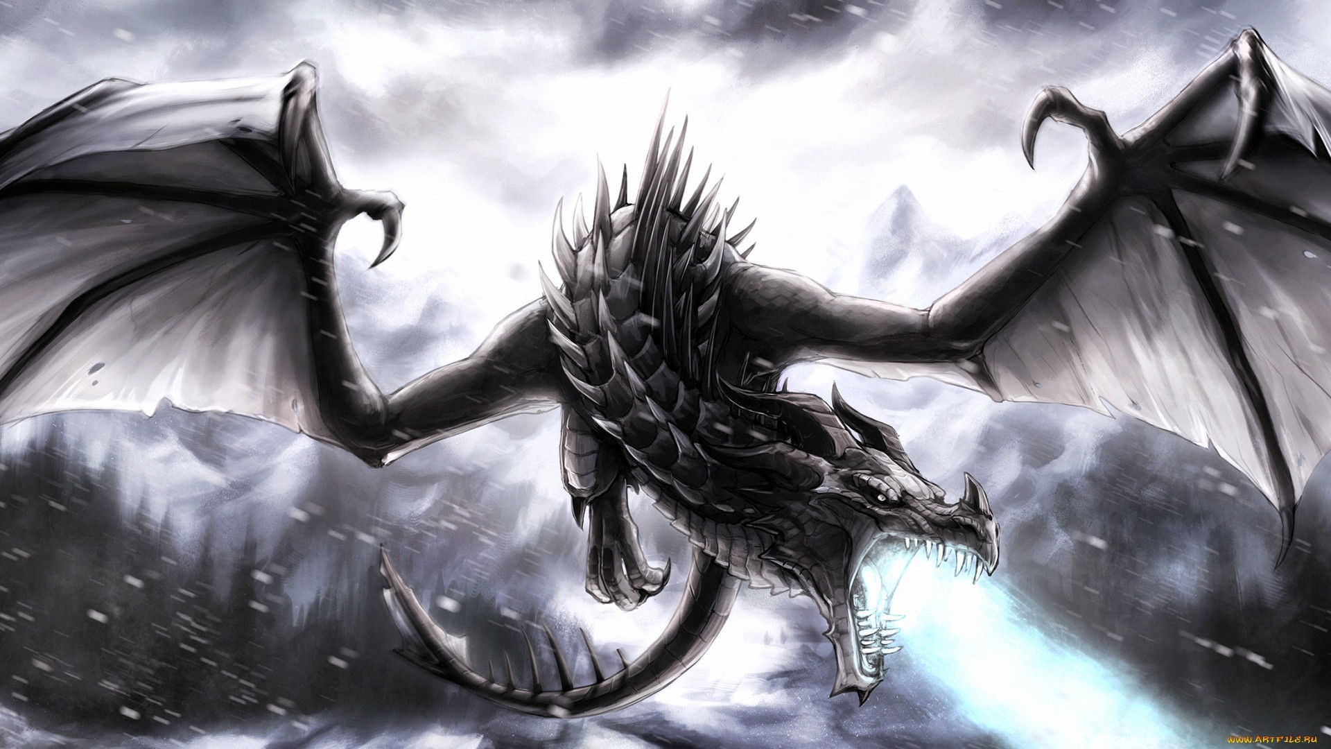 Black-Dragon ! Computer Wallpapers, Desktop Backgrounds   .