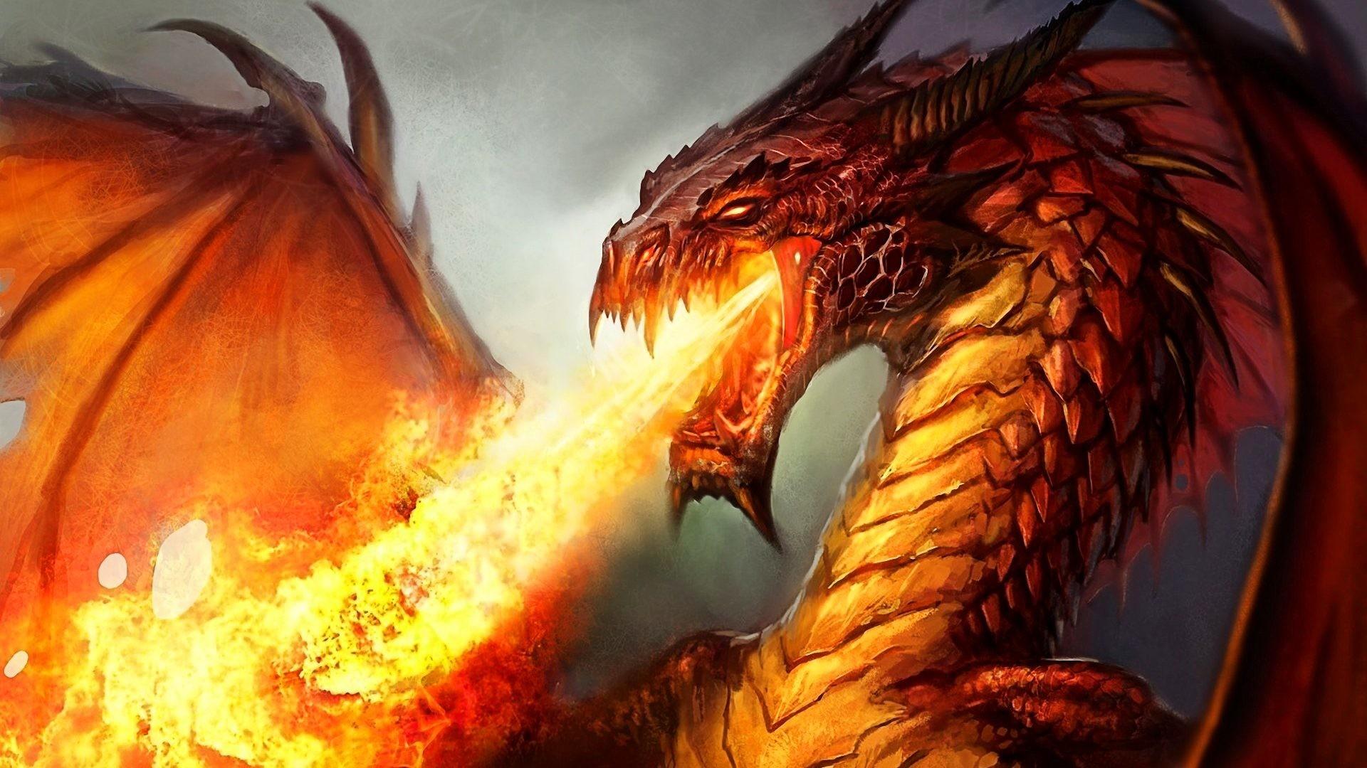 <b>Fire Dragon Wallpaper</b> Full