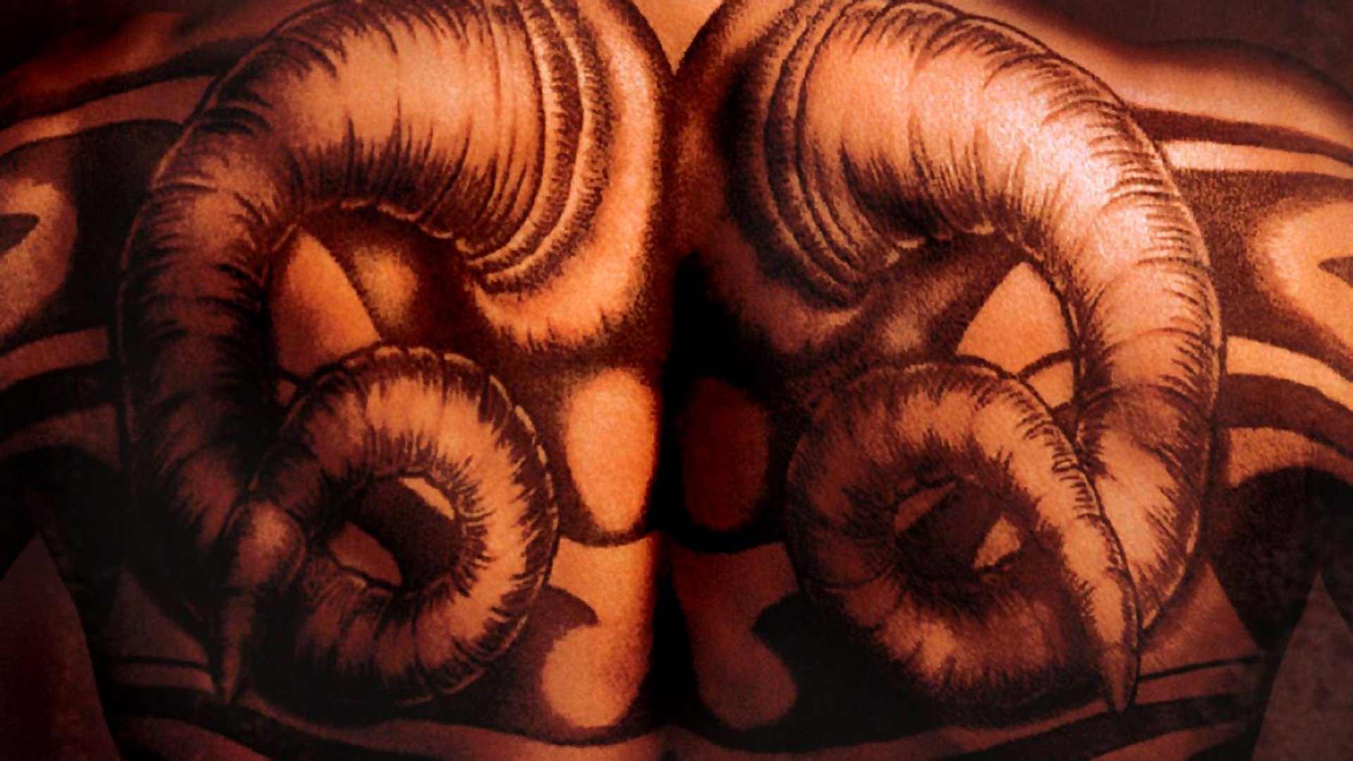 … Background Full HD 1080p. Wallpaper red dragon, back, tattoo,  dragon