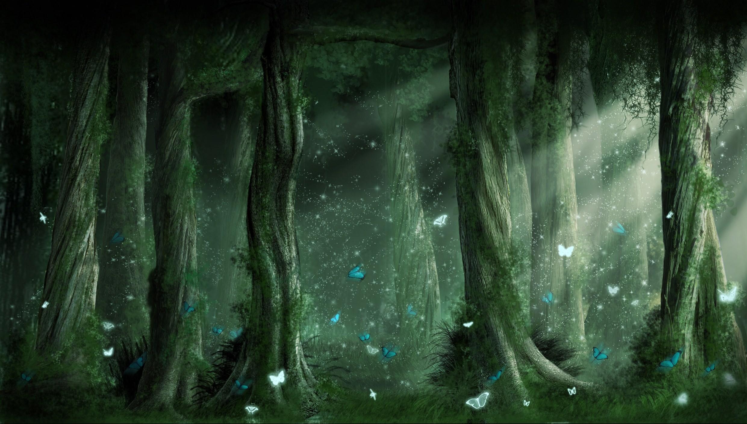 fantasy forest wallpaper hd